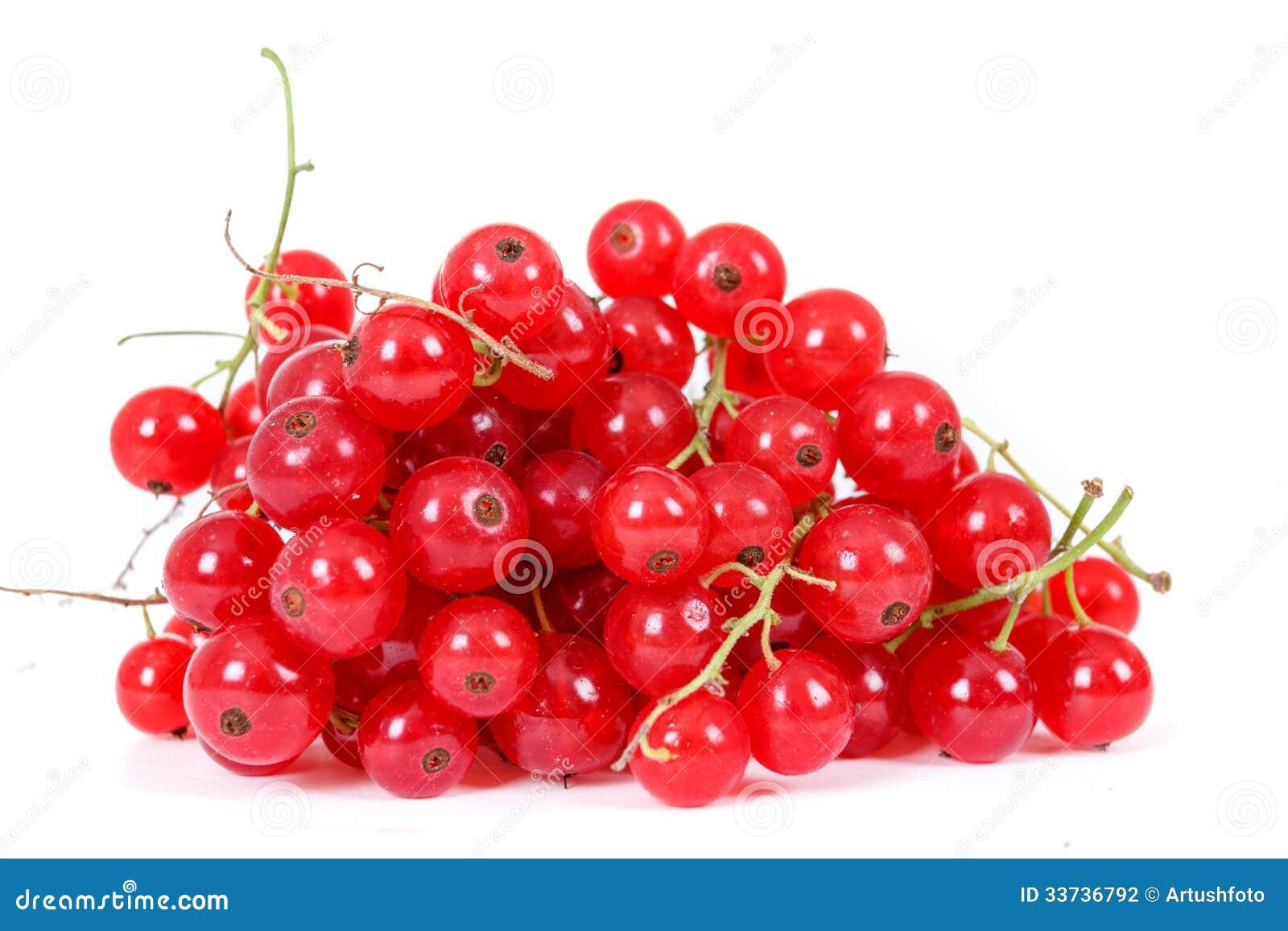 Сложите ягоды красной смородины на белой предпосылке