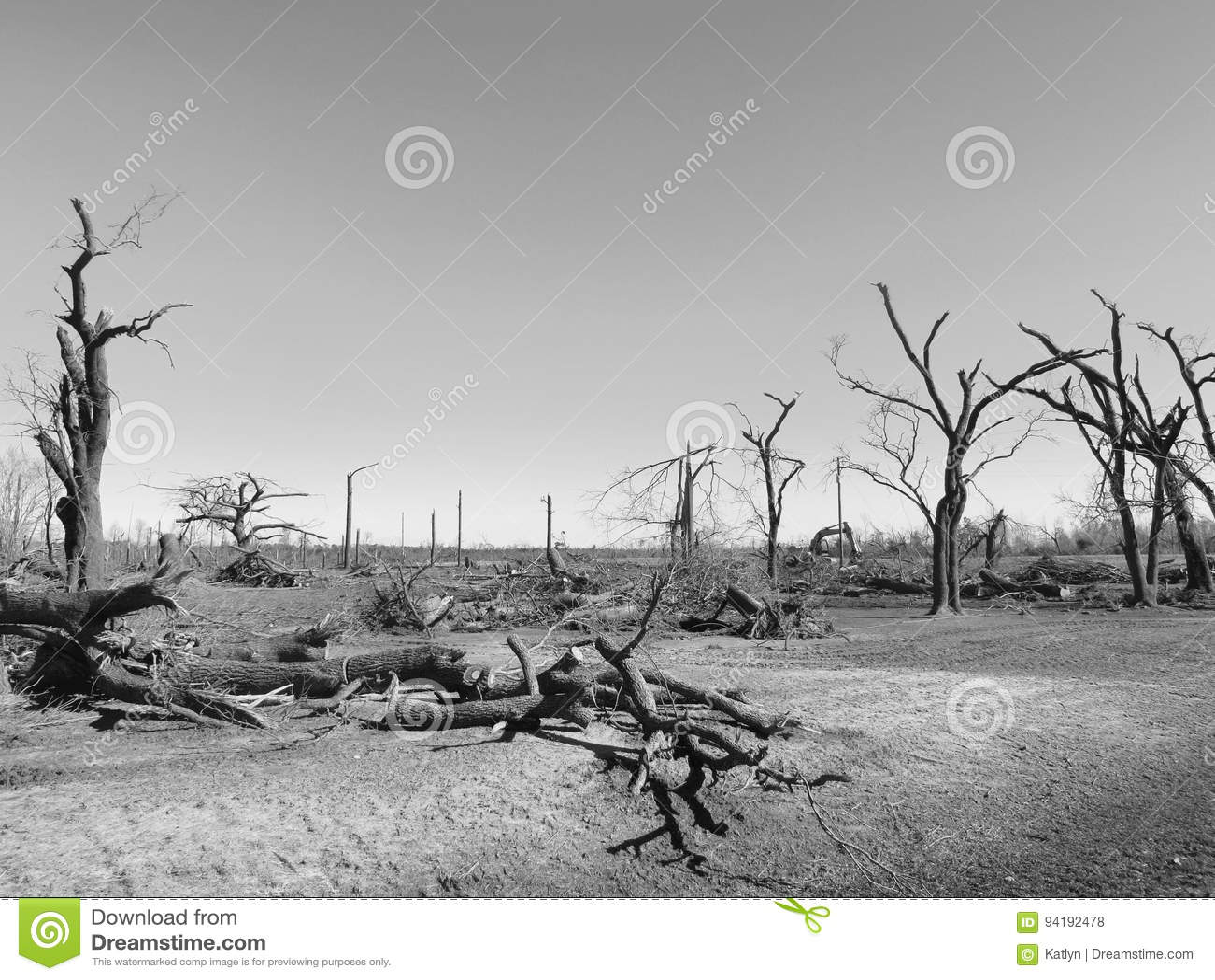 Сломленные деревья