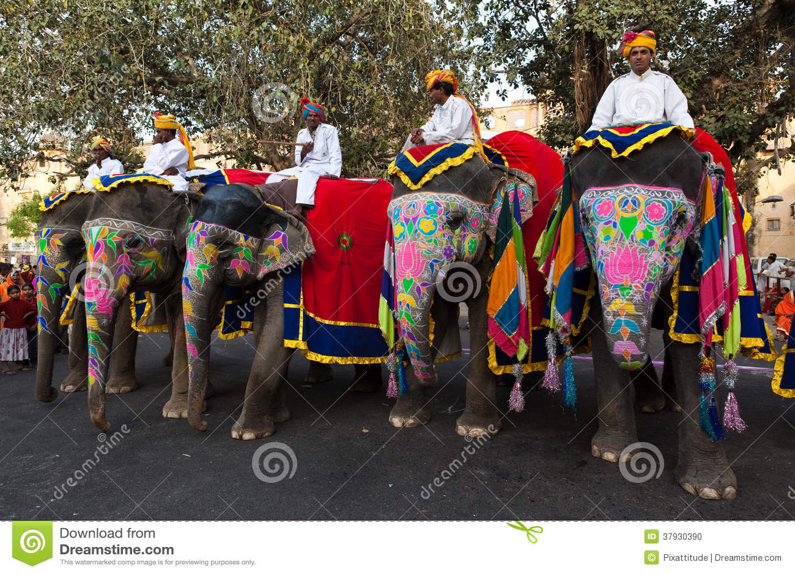 Слоны людей Gangaur Фестивал-Джайпура ехать