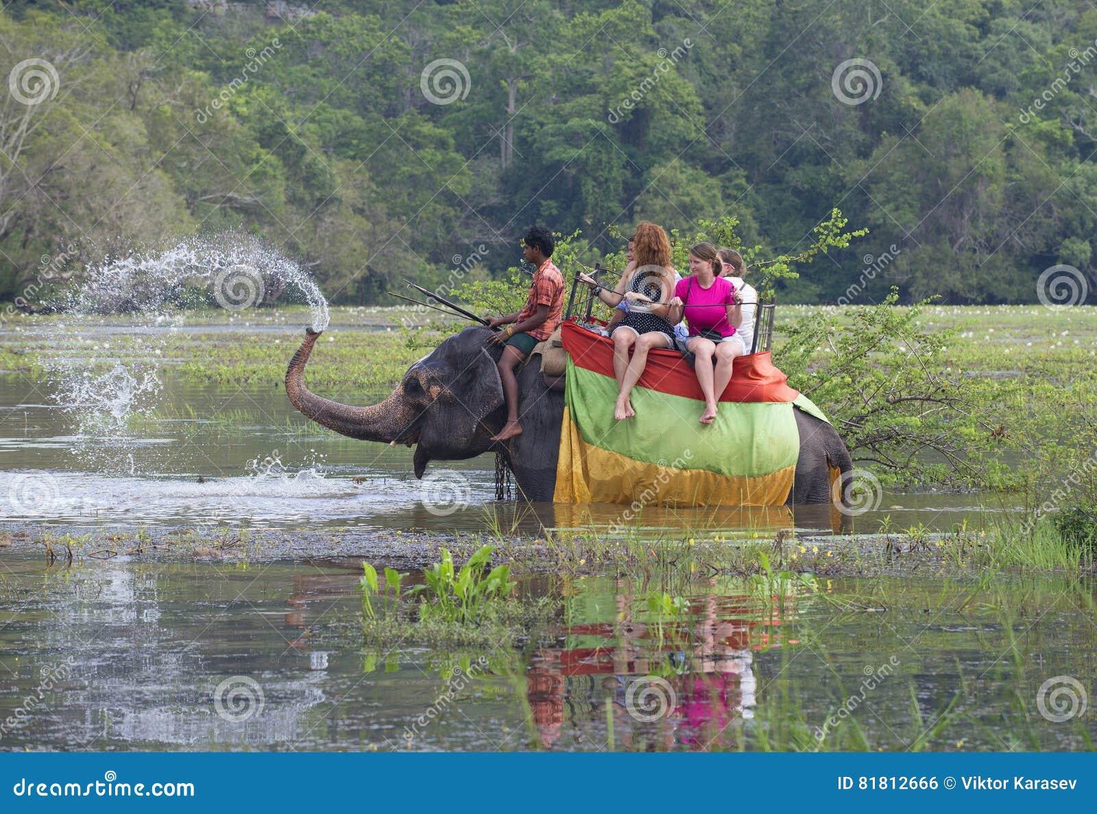 Слон с группой в составе туристы позволил фонтану хобота на overgrown пруде Sri Lanka