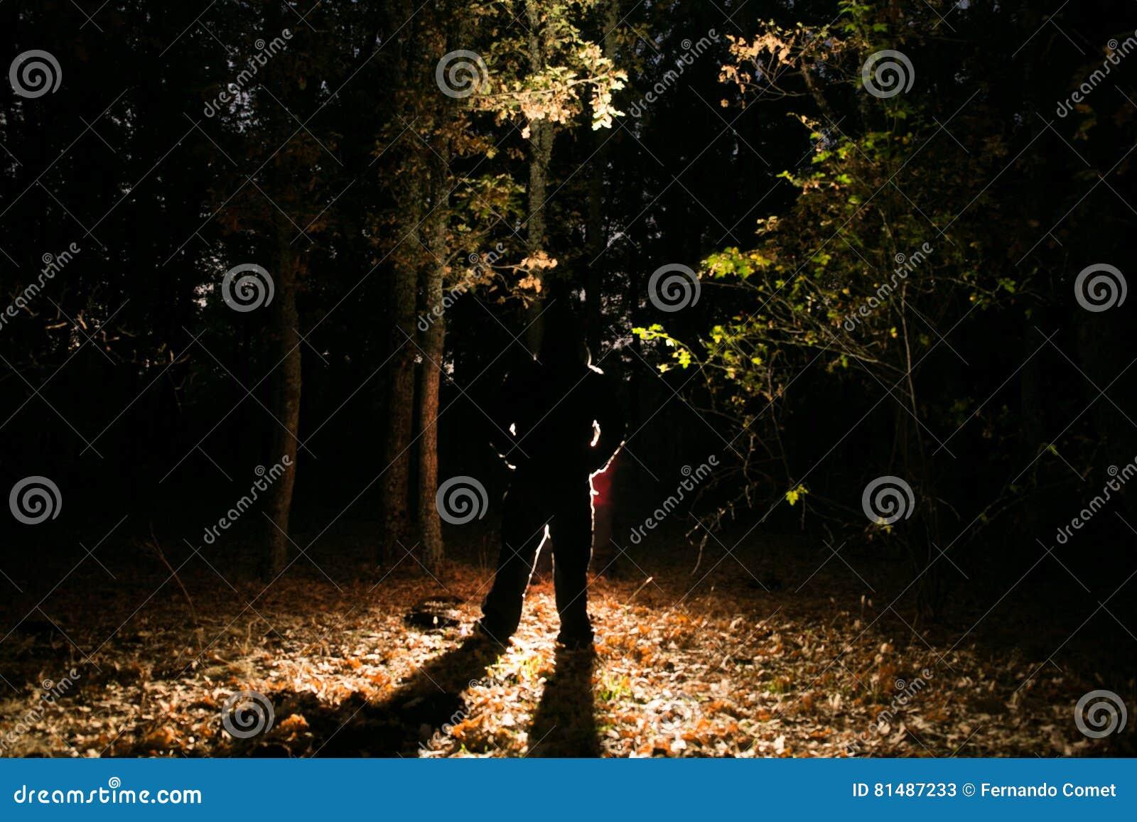 тайна на лесе
