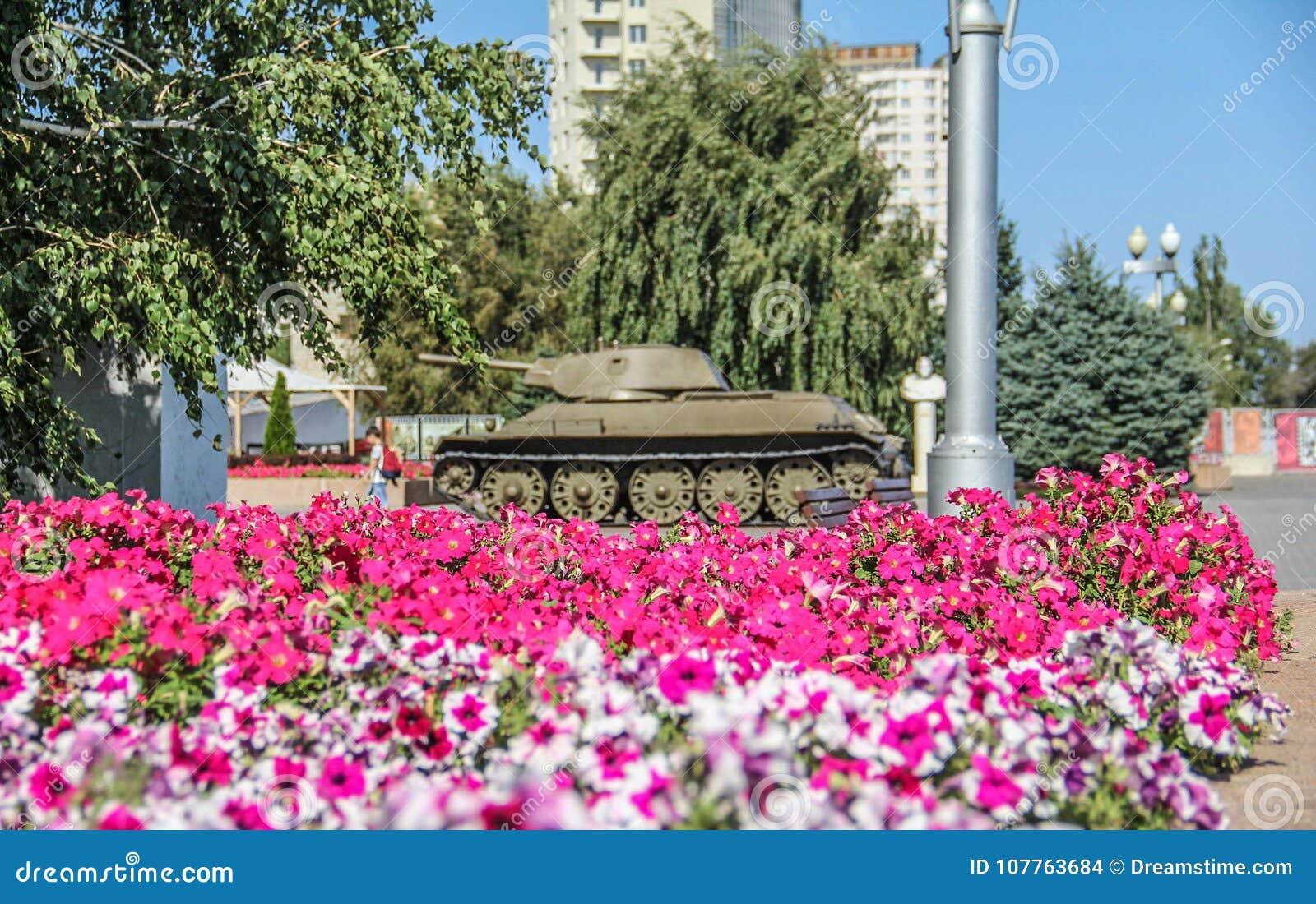 Танк и цветки