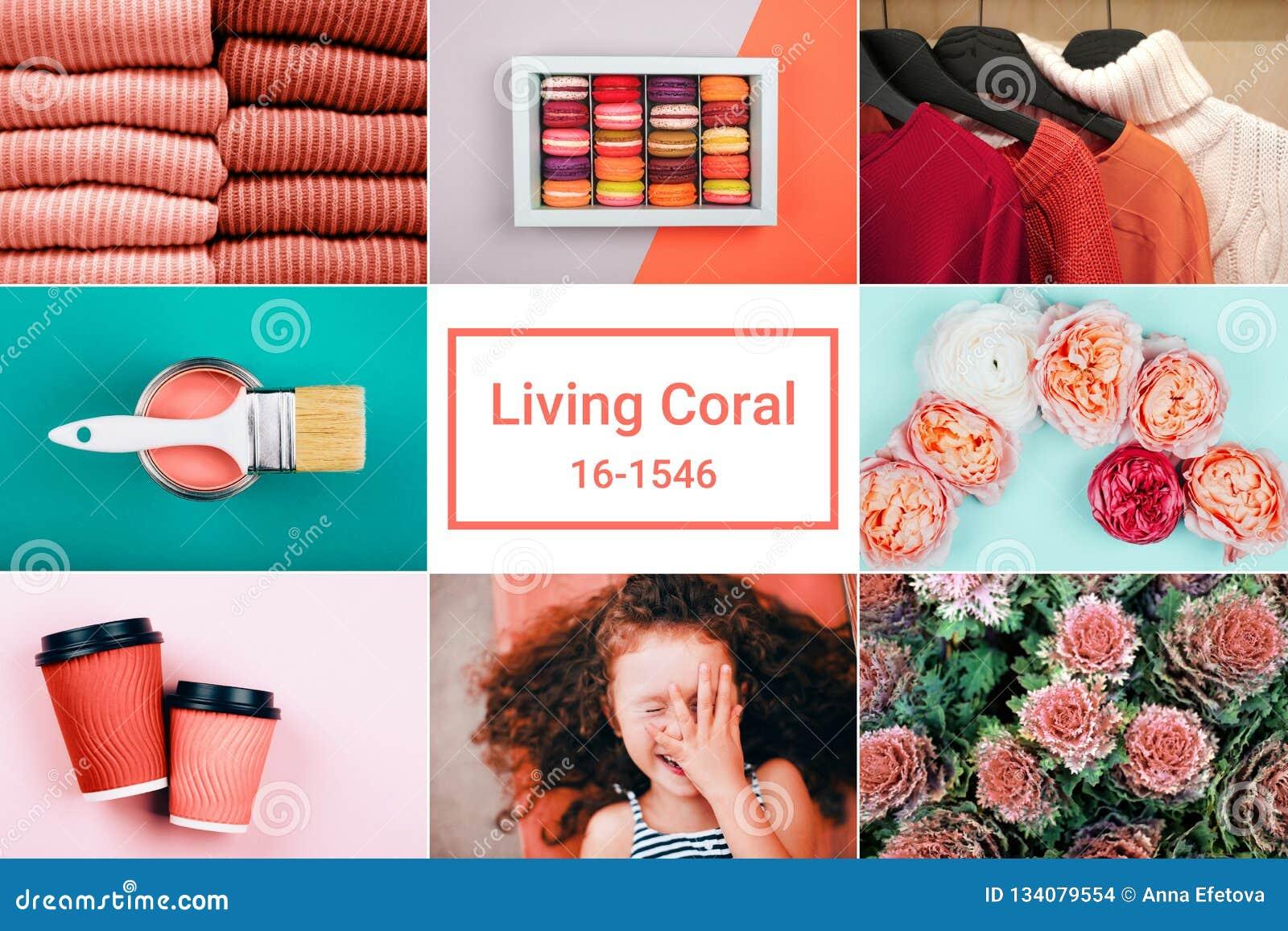 Творческий коллаж в живя цвете коралла