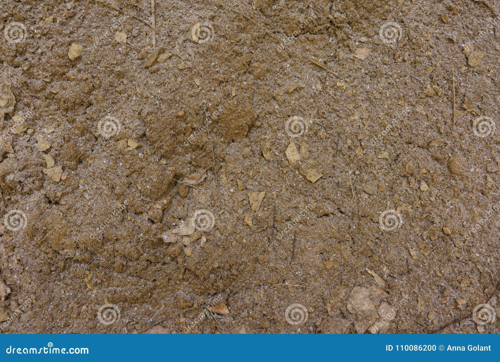 Текстура земли с небольшим количеством снега без заводов brougham конец вверх Взгляд сверху