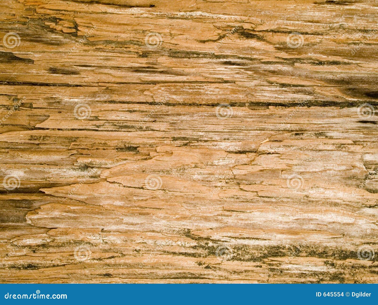 Download Текстура макроса - древесина - зерно Стоковое Фото - изображение насчитывающей детально, бульвара: 645554