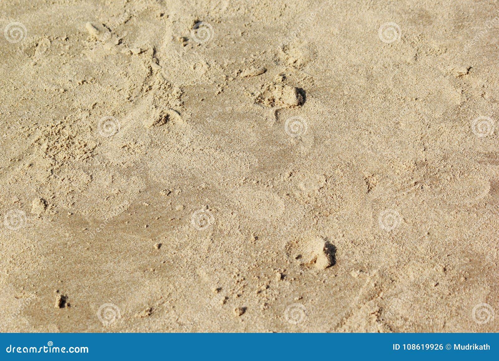 текстура песка предпосылок идеально