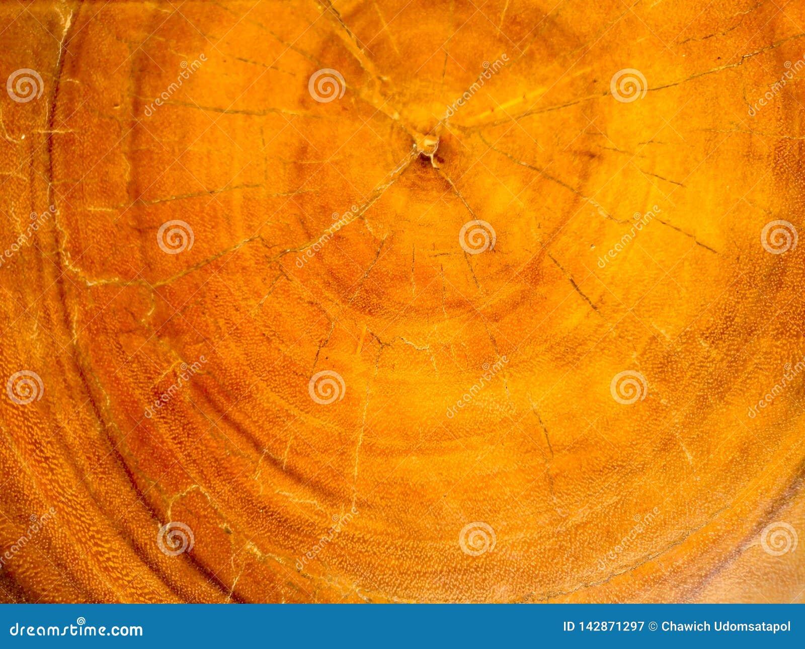 Текстура природы старая деревянная