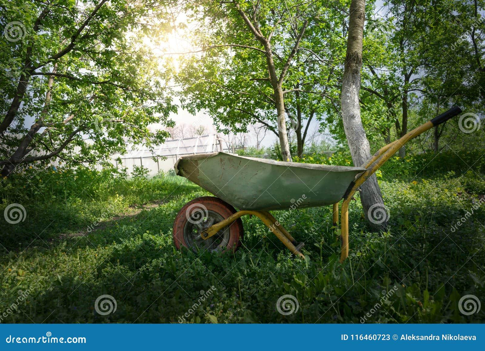 Тележка в саде под солнечным светом
