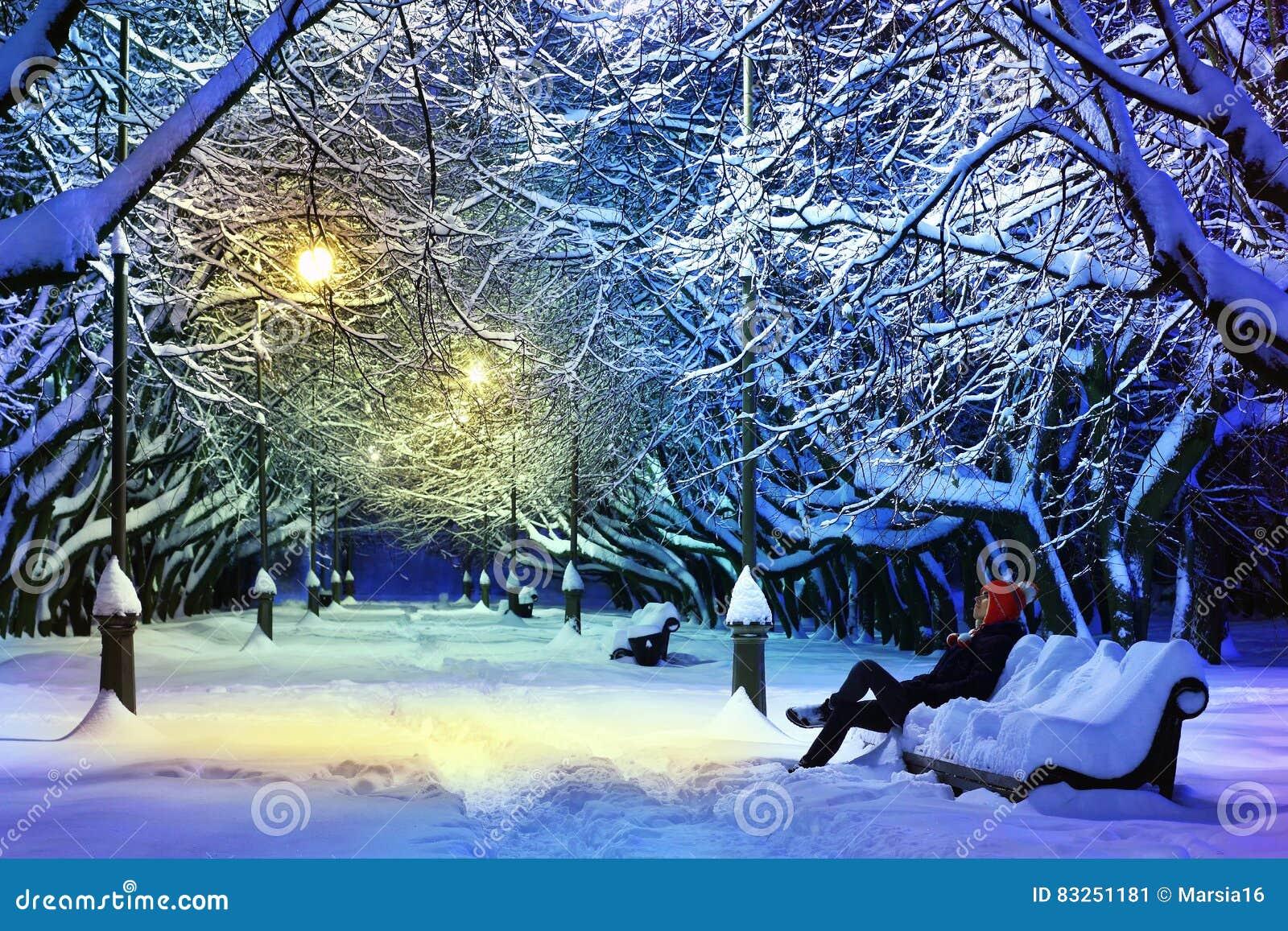 темная морозная зима парка ночи