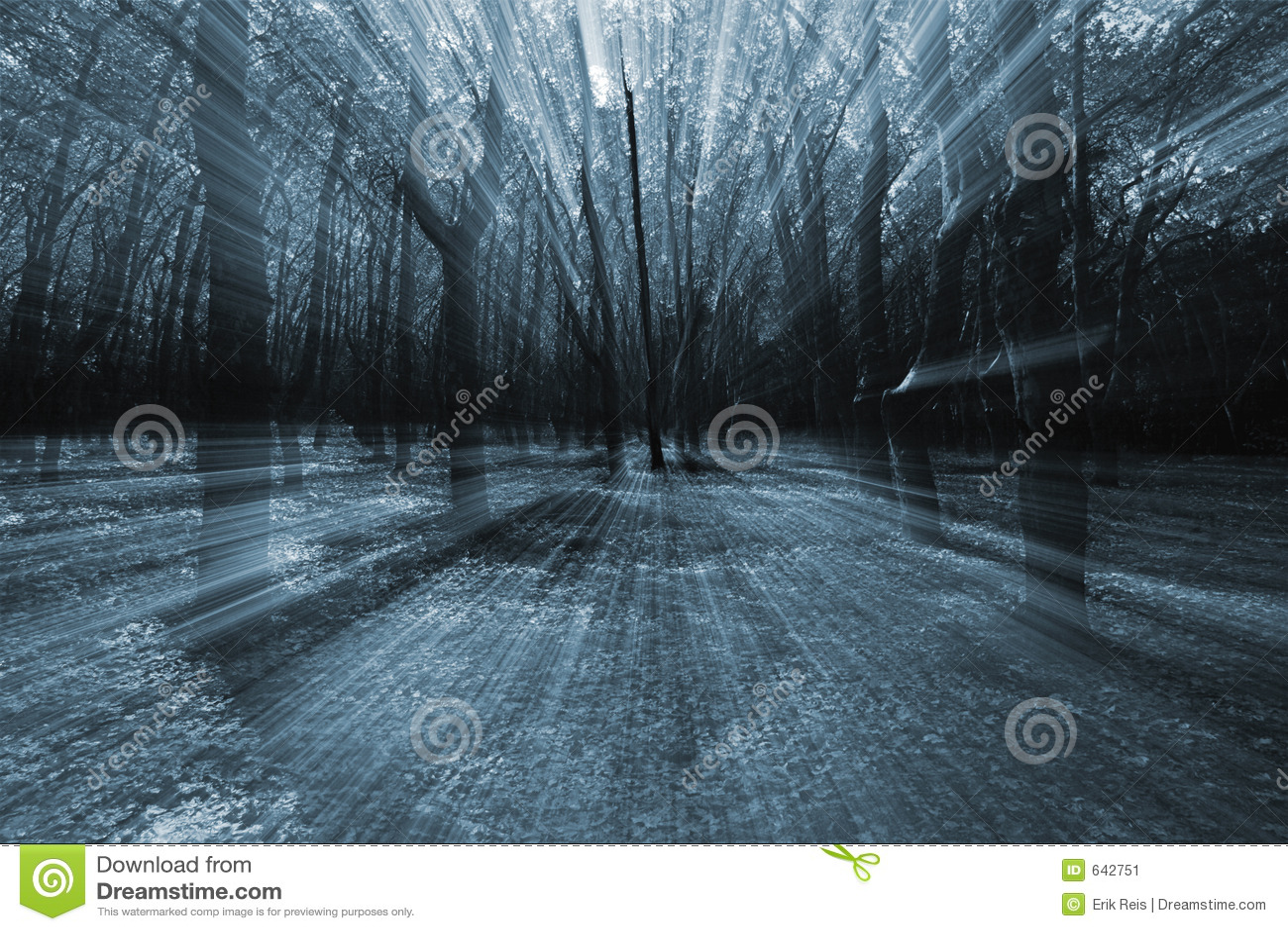 Download темная пуща стоковое изображение. изображение насчитывающей тайна - 642751