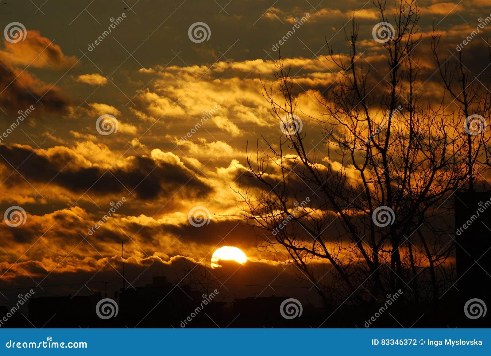 Темнота заволакивает желтое заходящее солнце