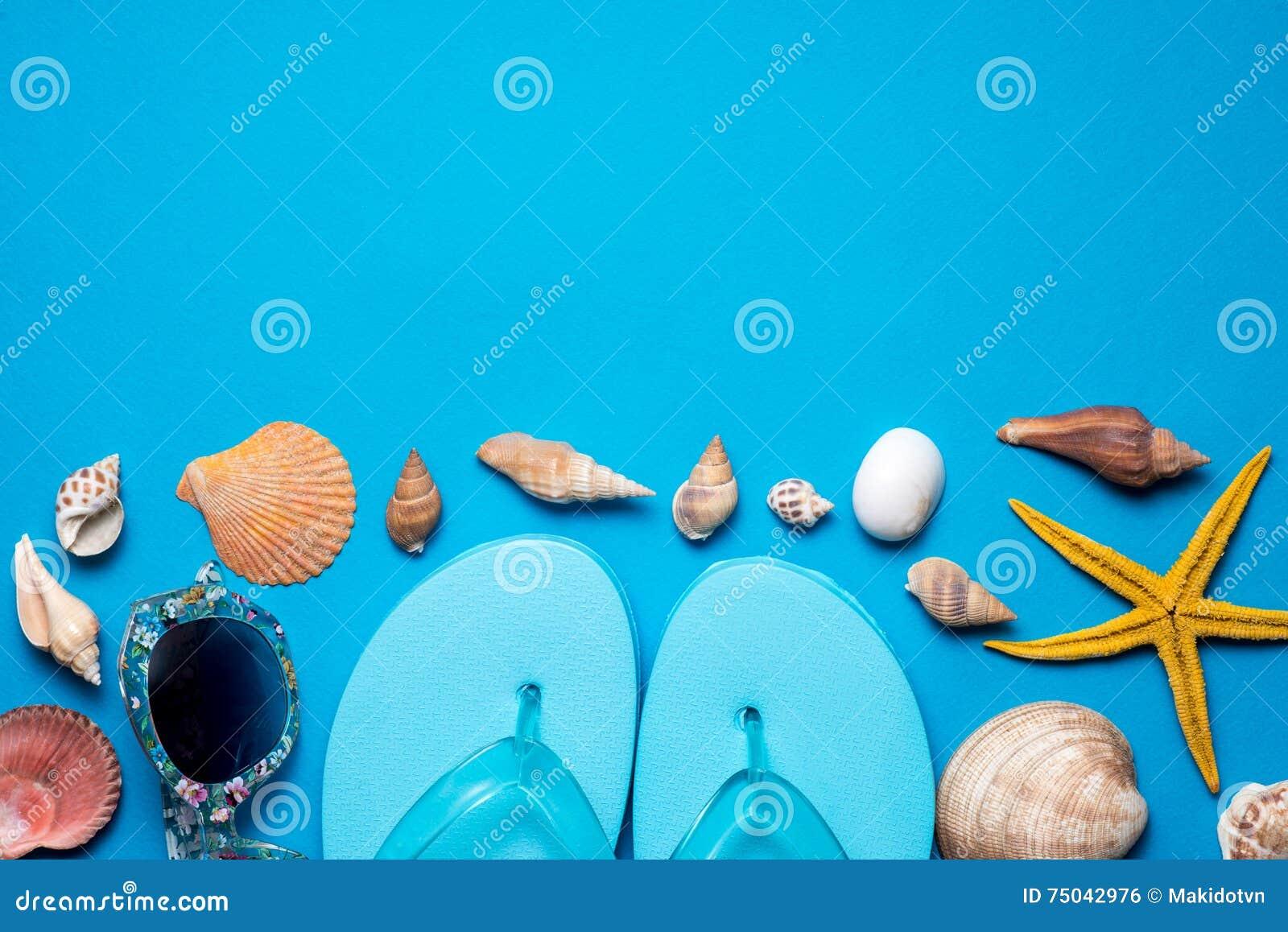 Темповые сальто сальто; seashells на голубой предпосылке скопируйте космос для вашего текста