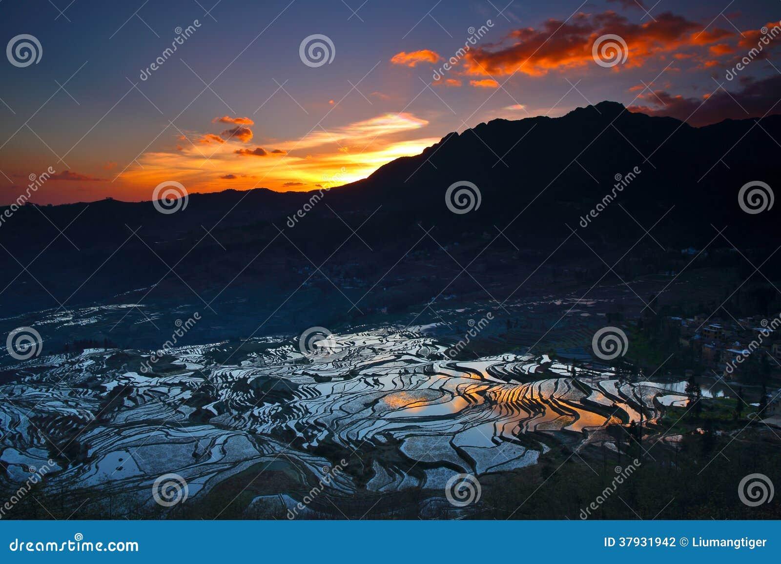Терраса в восходе солнца 2