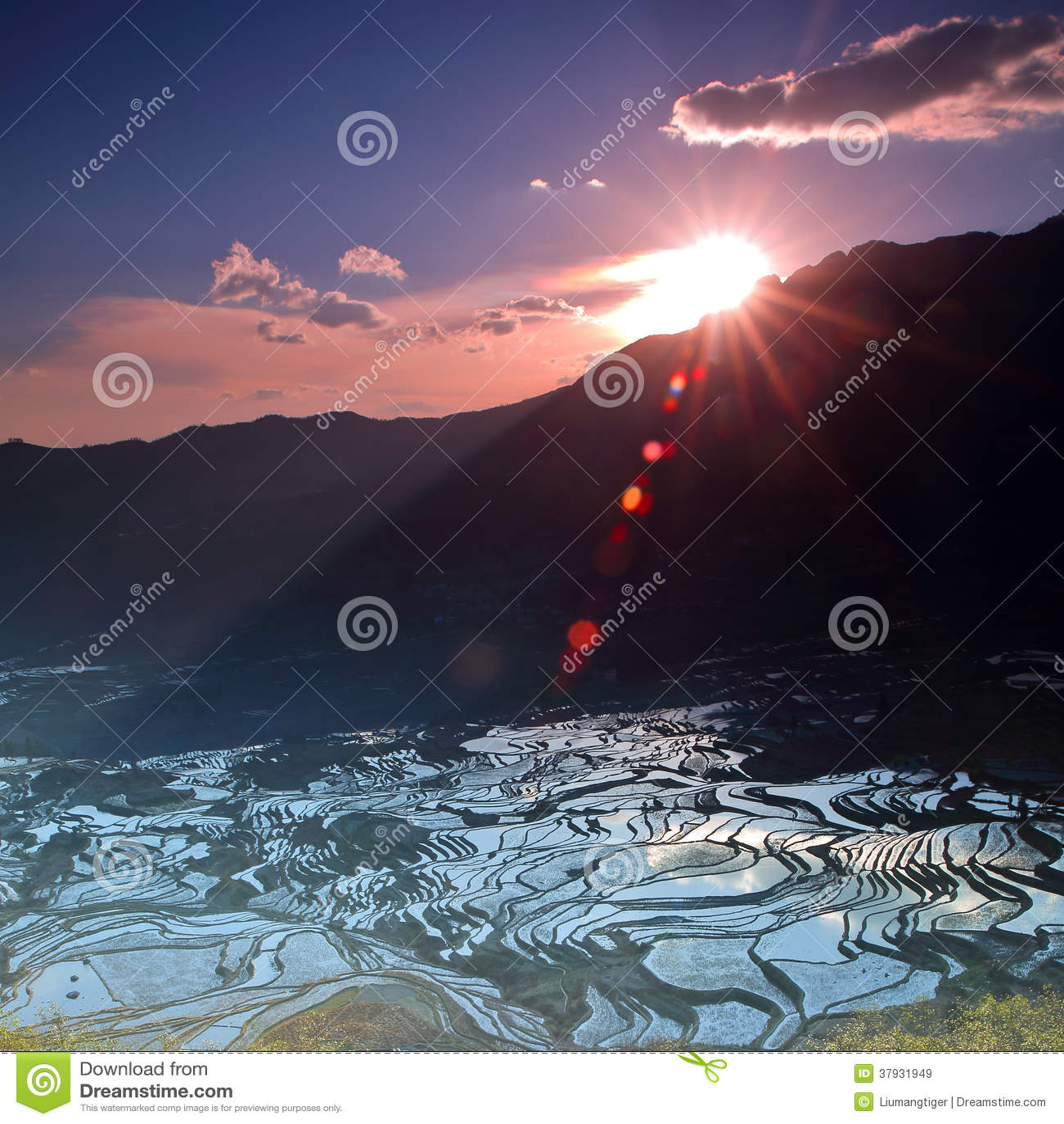 Терраса в восходе солнца 3