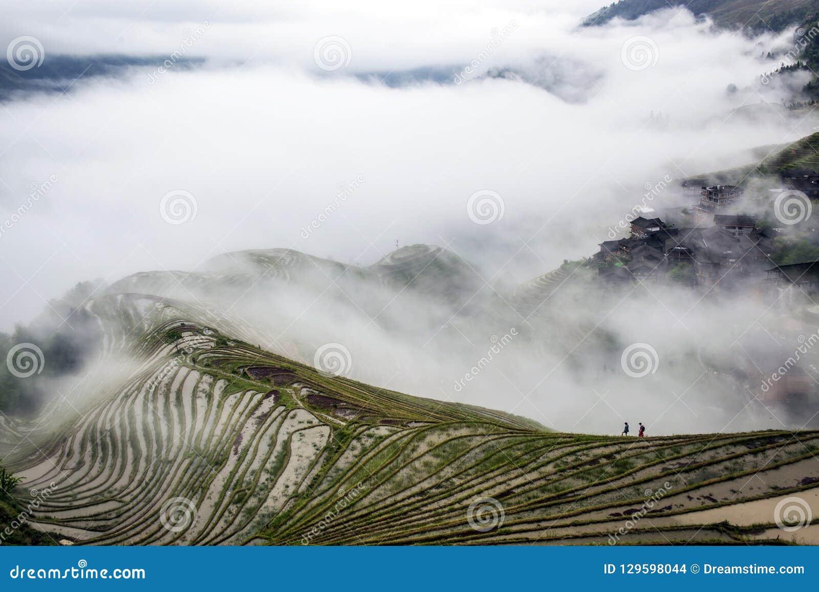Террасное поле в облаке