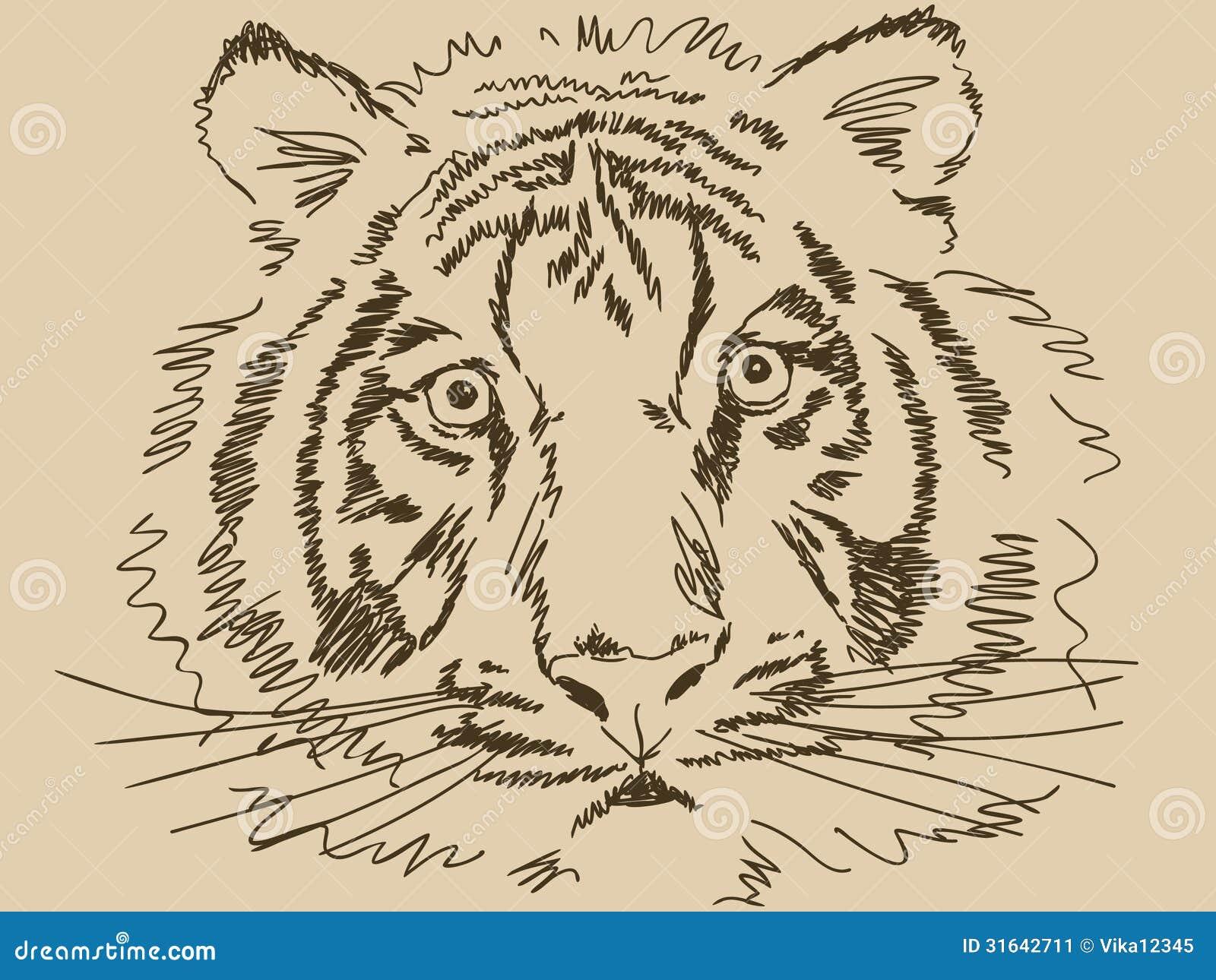 Нарисовать тигра своими руками