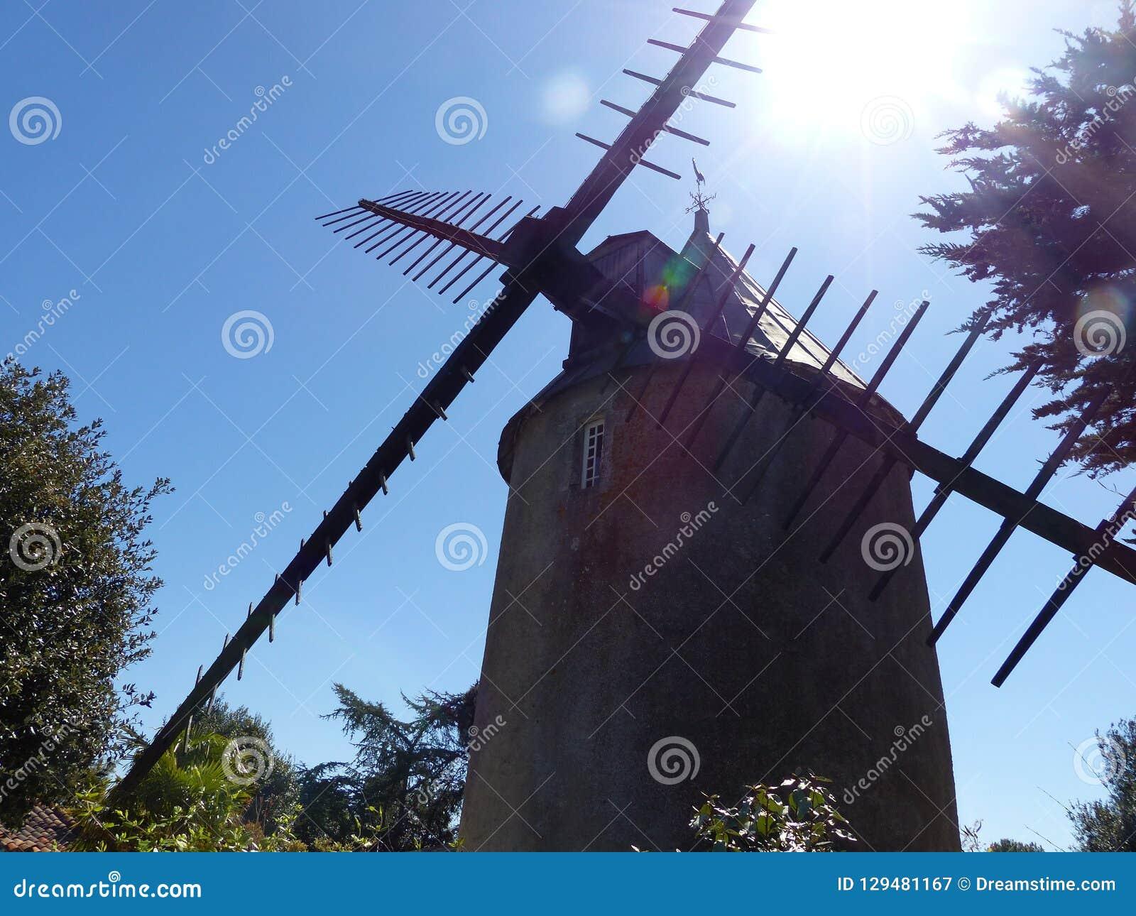 Типичная мельница Голландии во Франции
