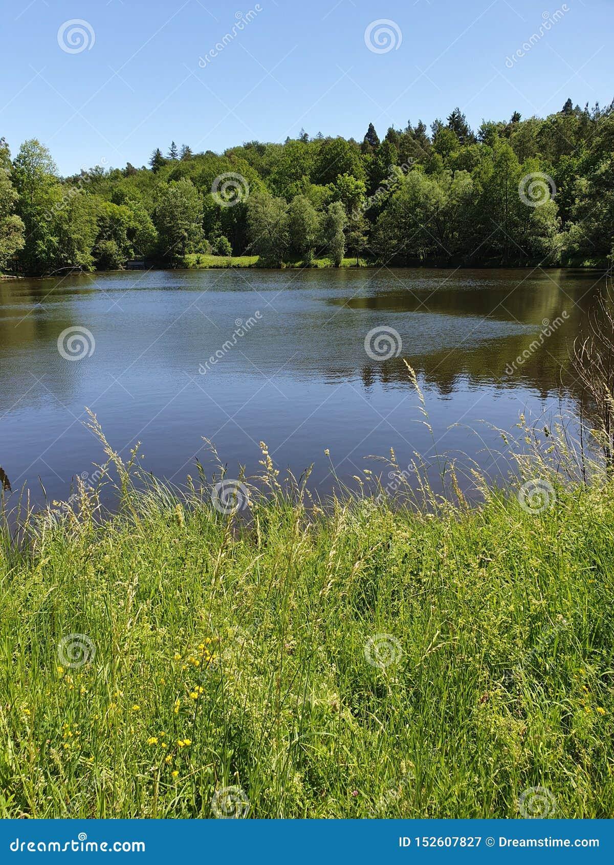 Тихие поля озера