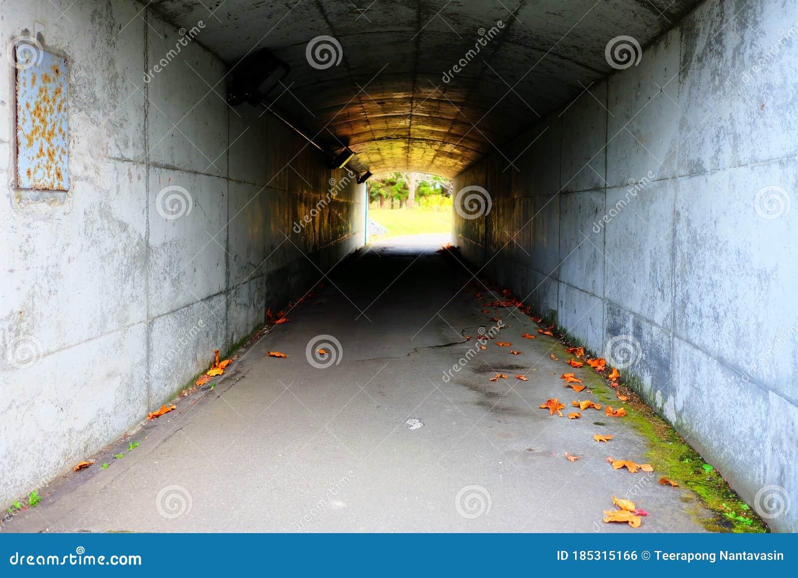 Тоннель из бетона бетон дск