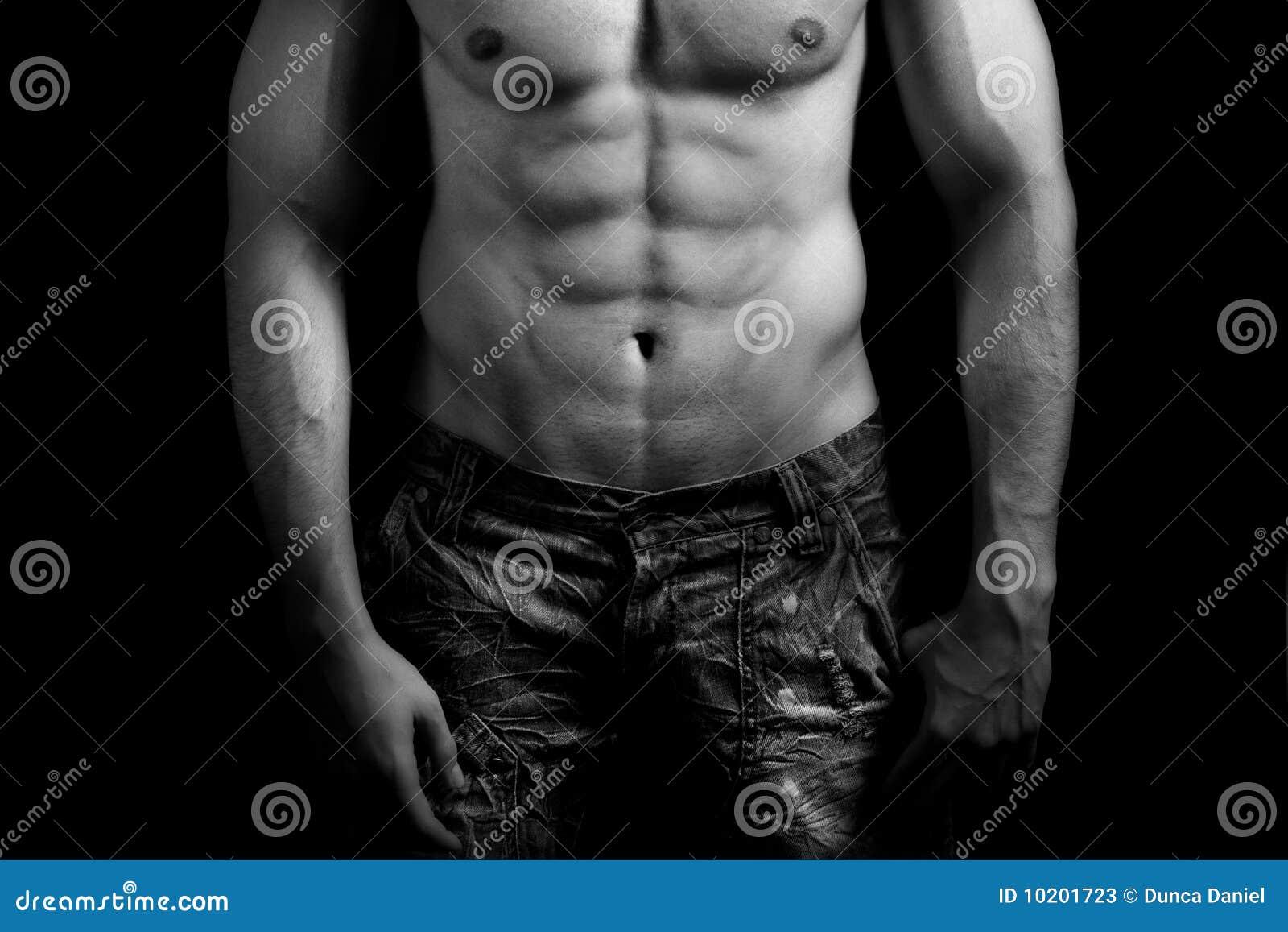 торс человека брюшка мышечный сексуальный