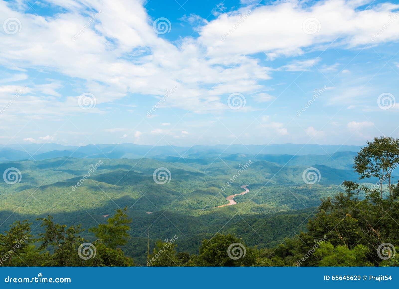 точка зрения на зеленой траве