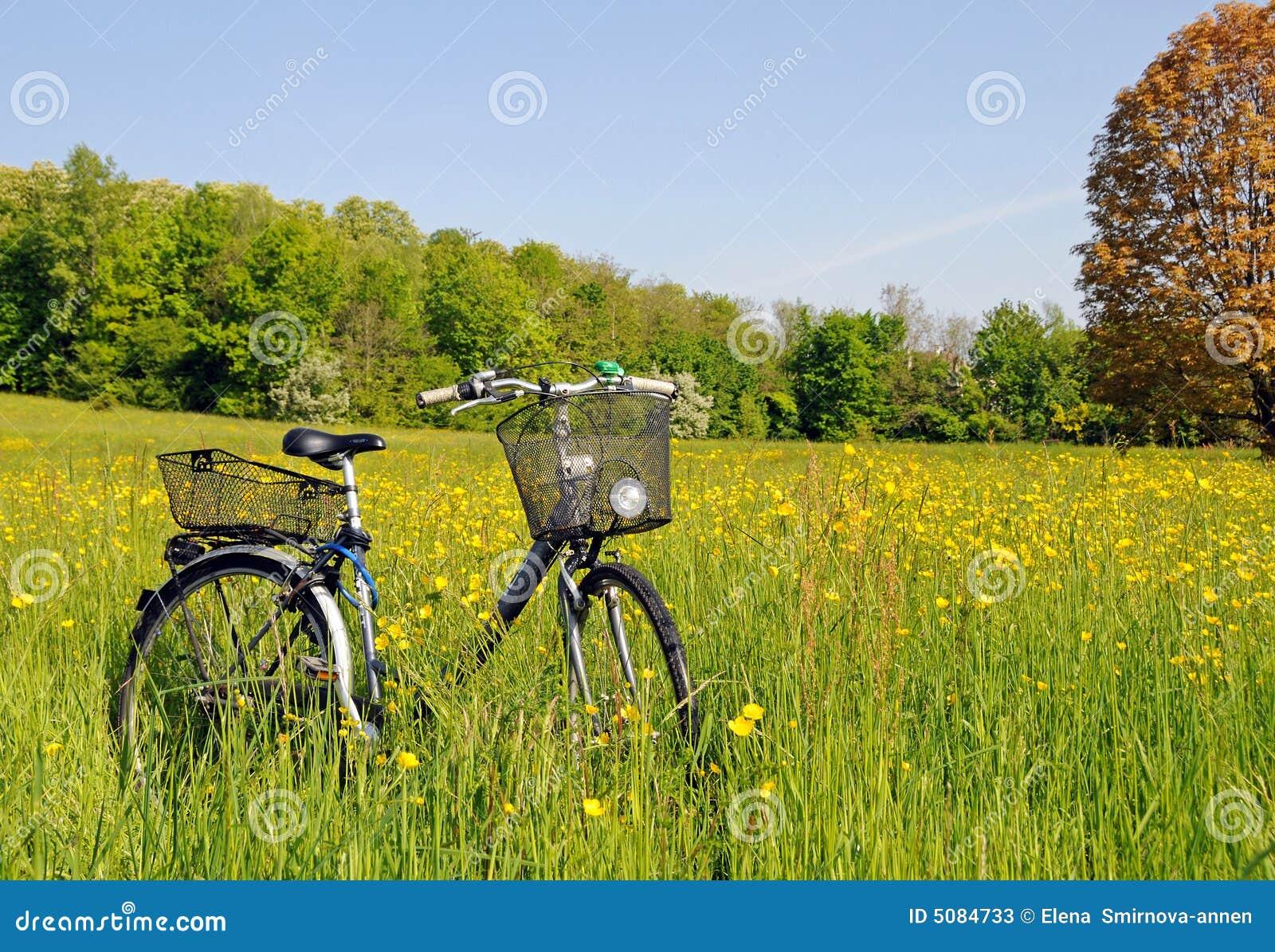 трава велосипеда