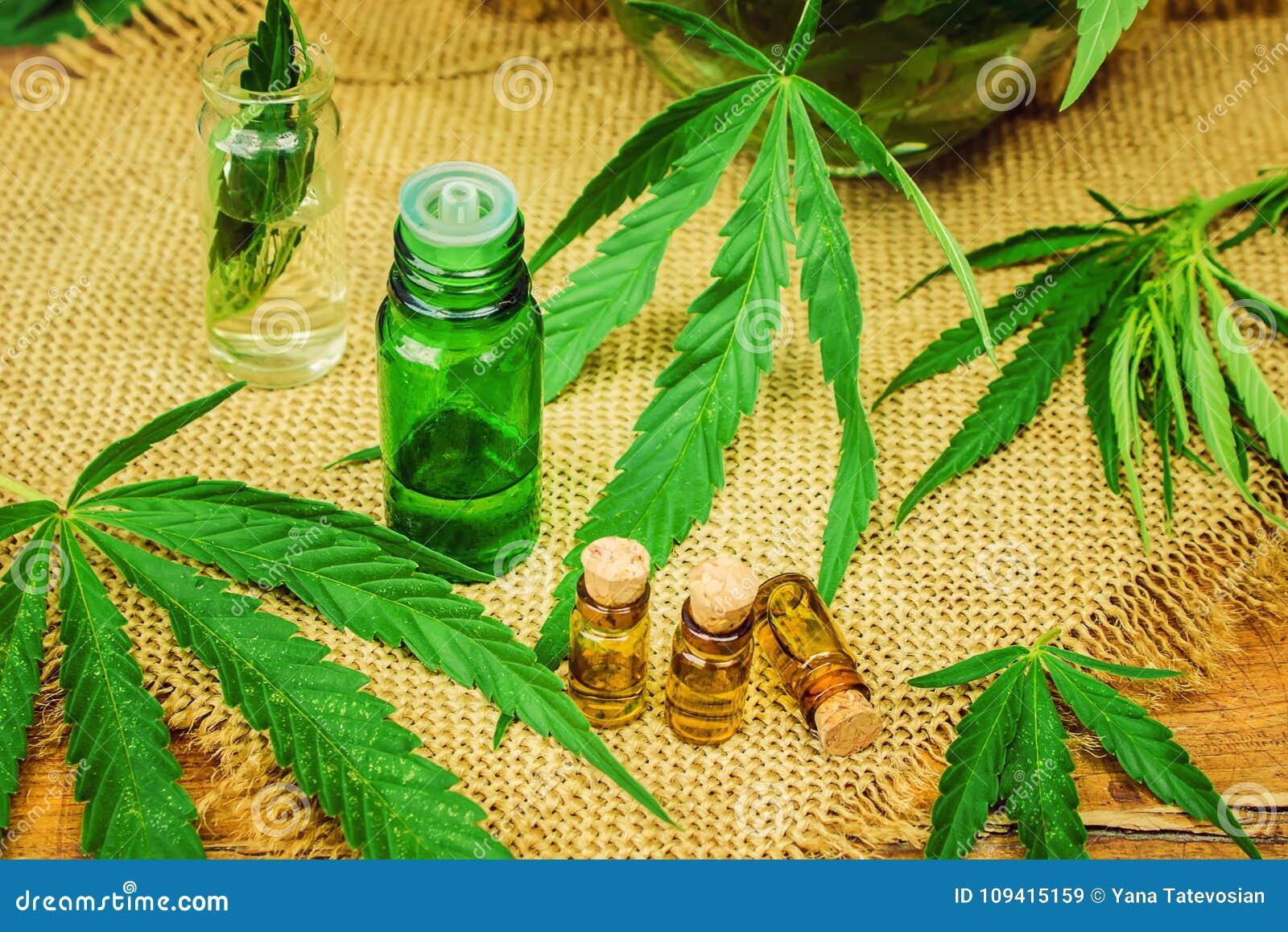 Отвар с конопли марихуана полезная или нет видео