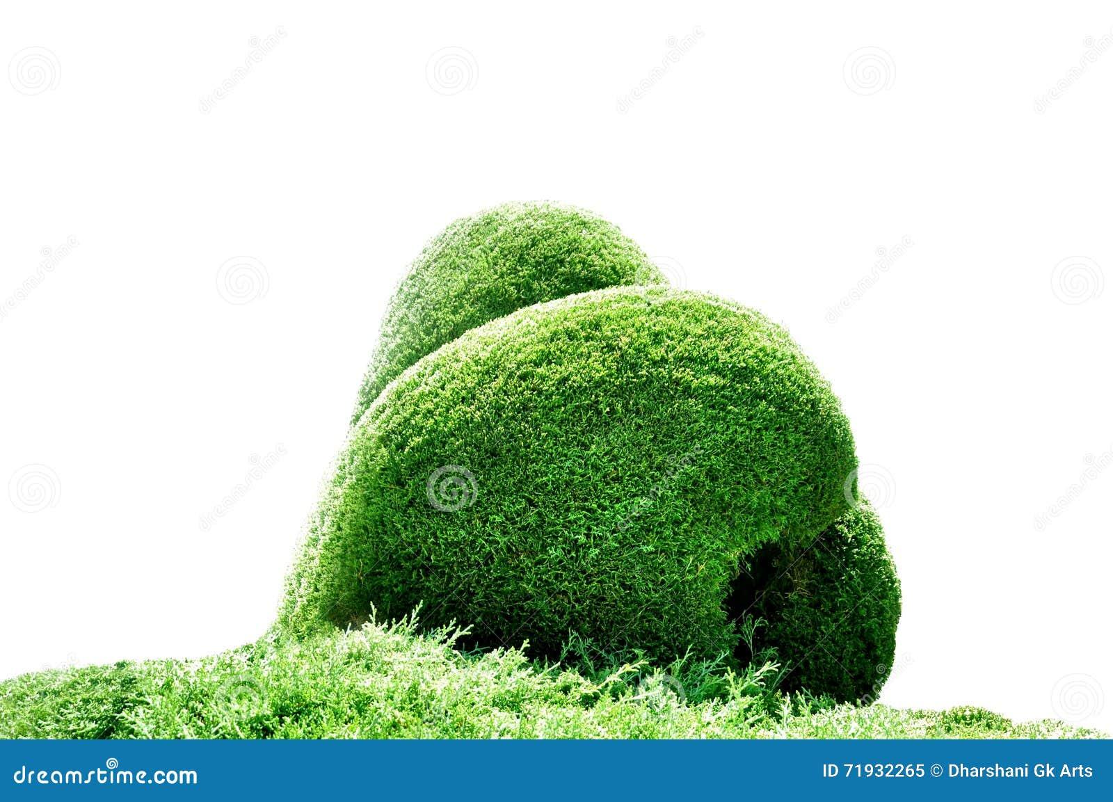 трава формы влюбленности украшения