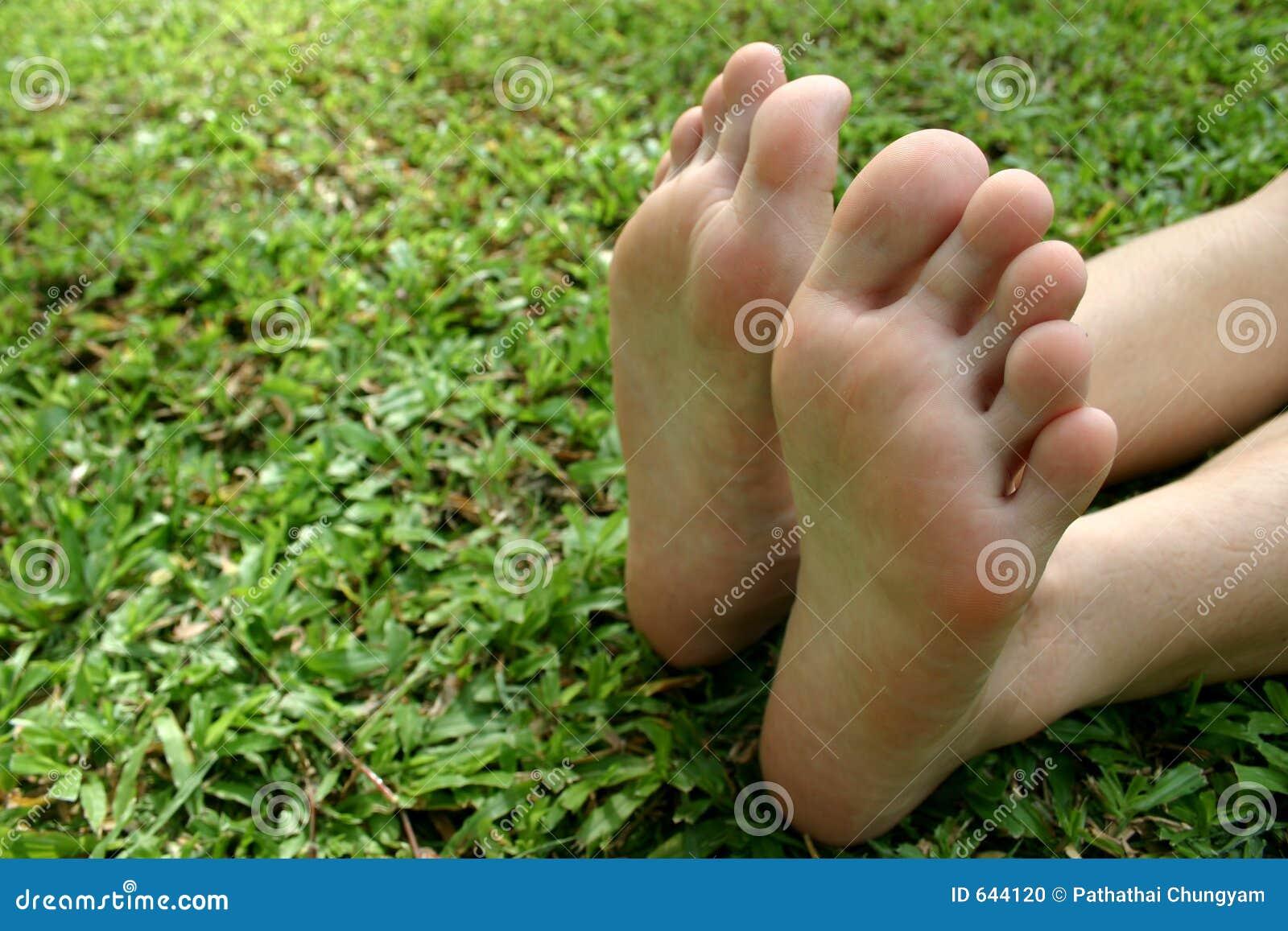 Download трава стоковое фото. изображение насчитывающей backhoe - 644120