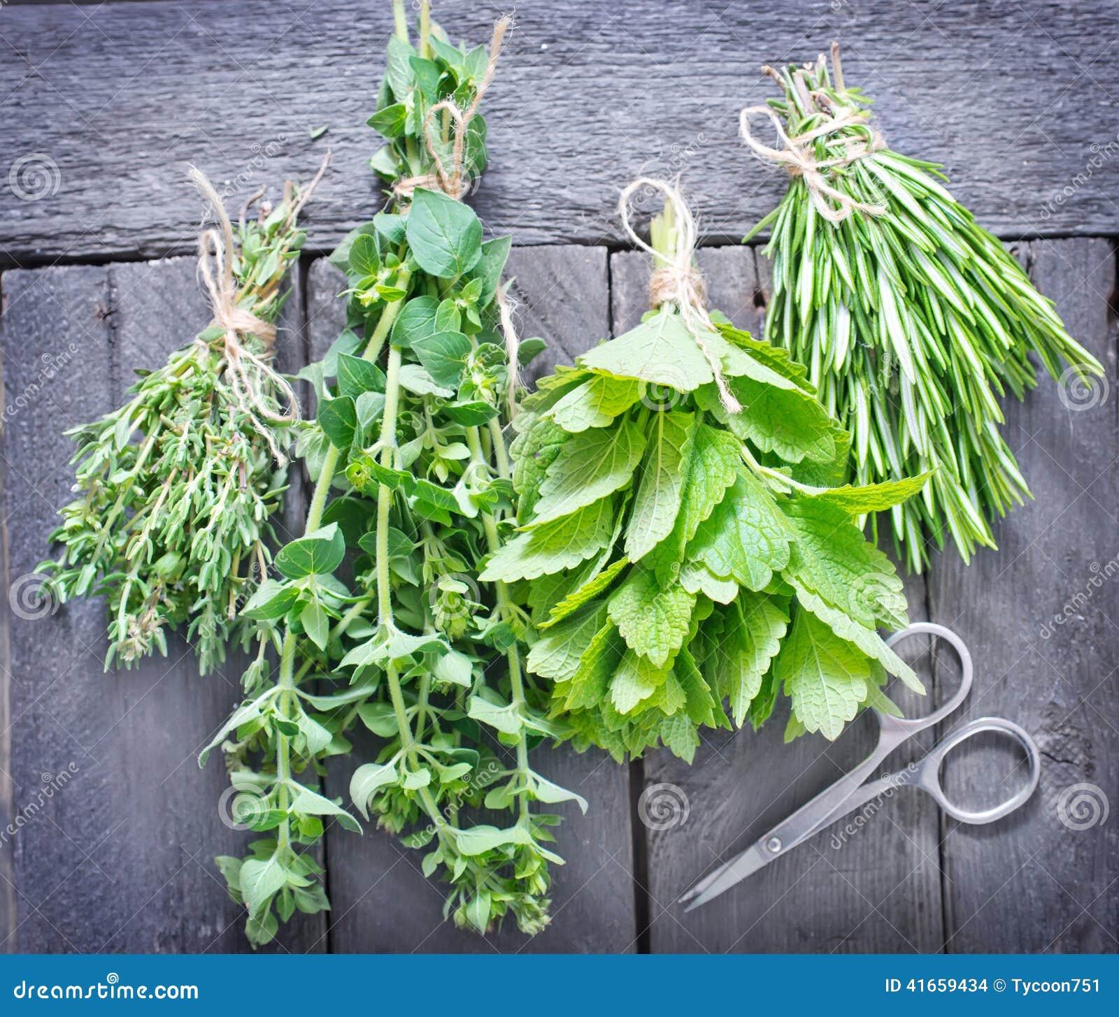 Травы ароматности