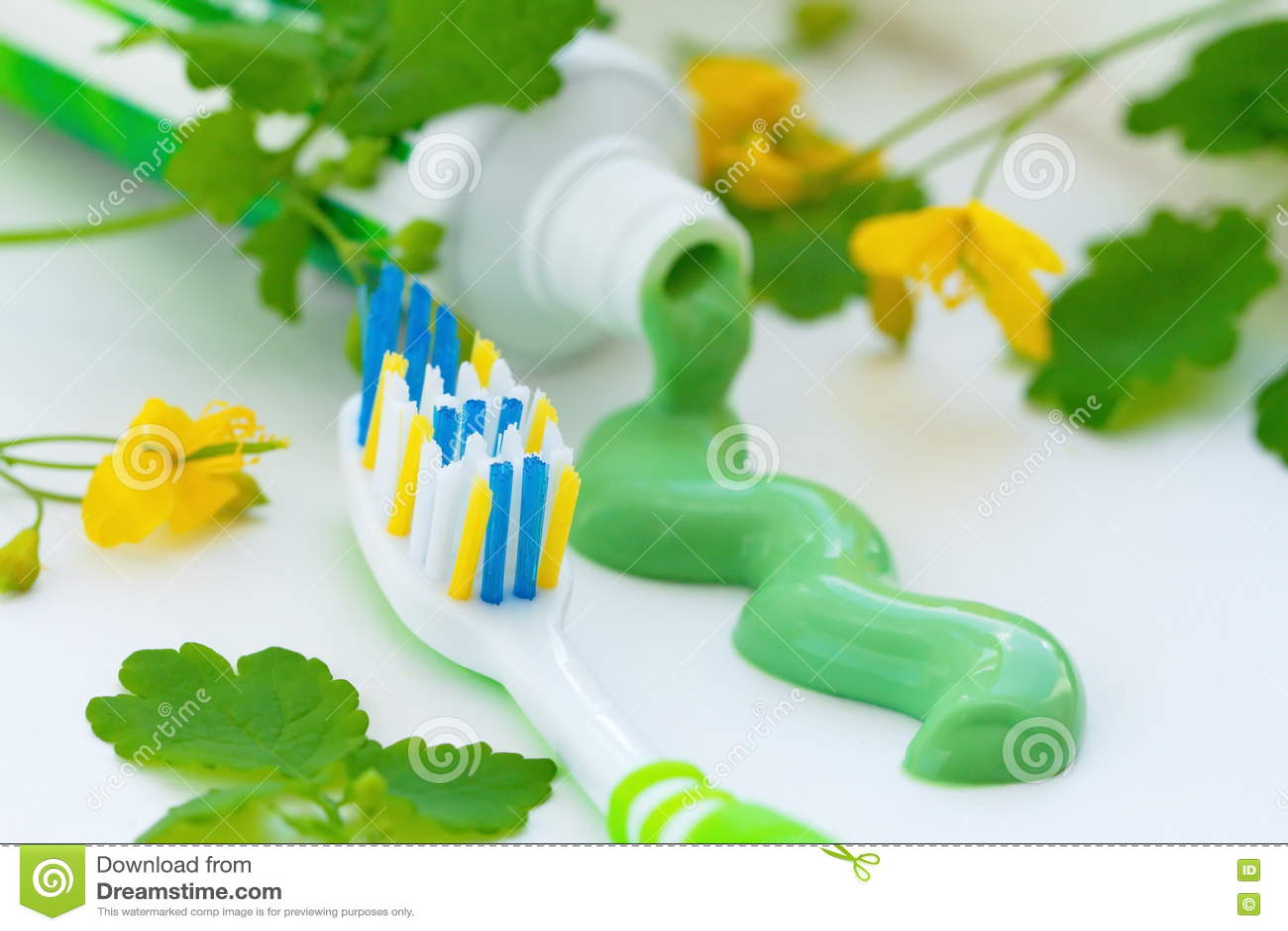 Травяная зубная паста и зубная щетка