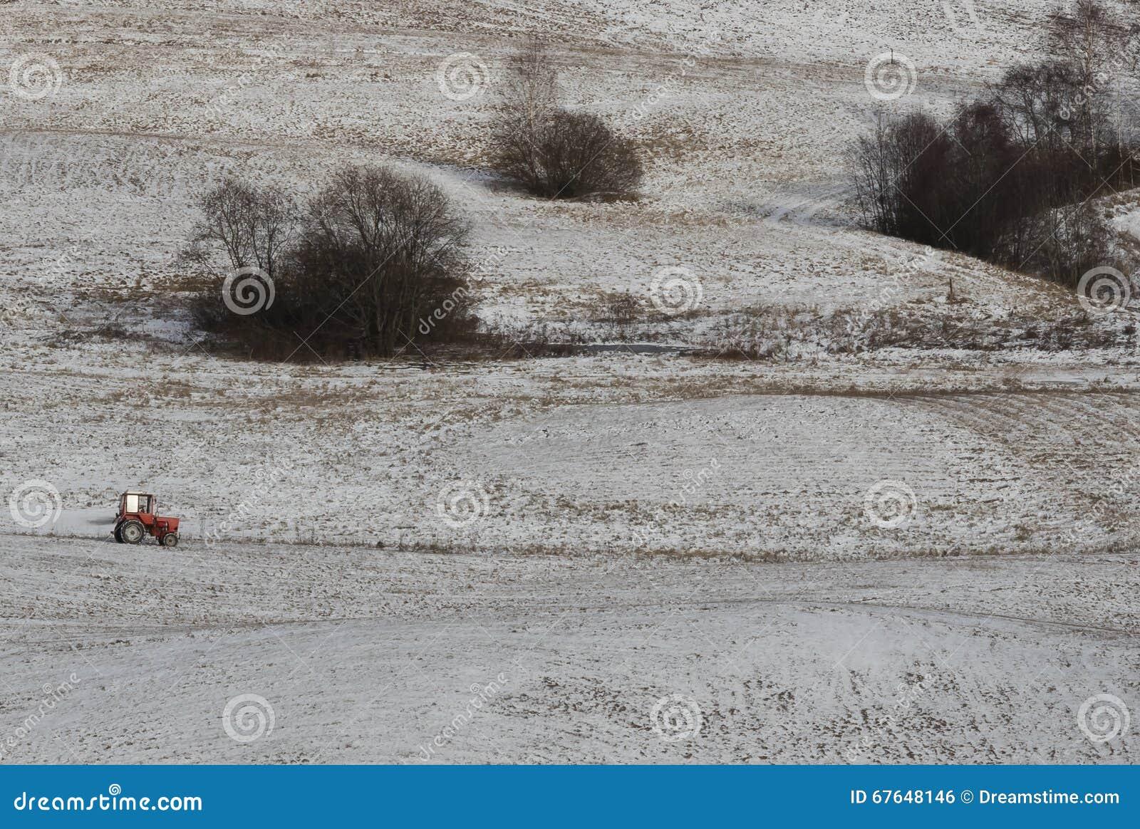 трактор красного цвета поля cornwall Англии