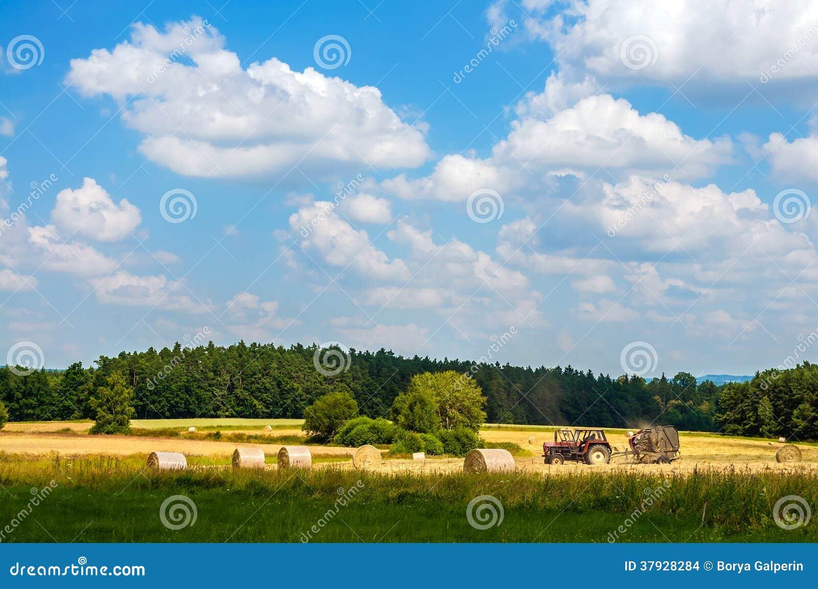 Трактор работая в поле