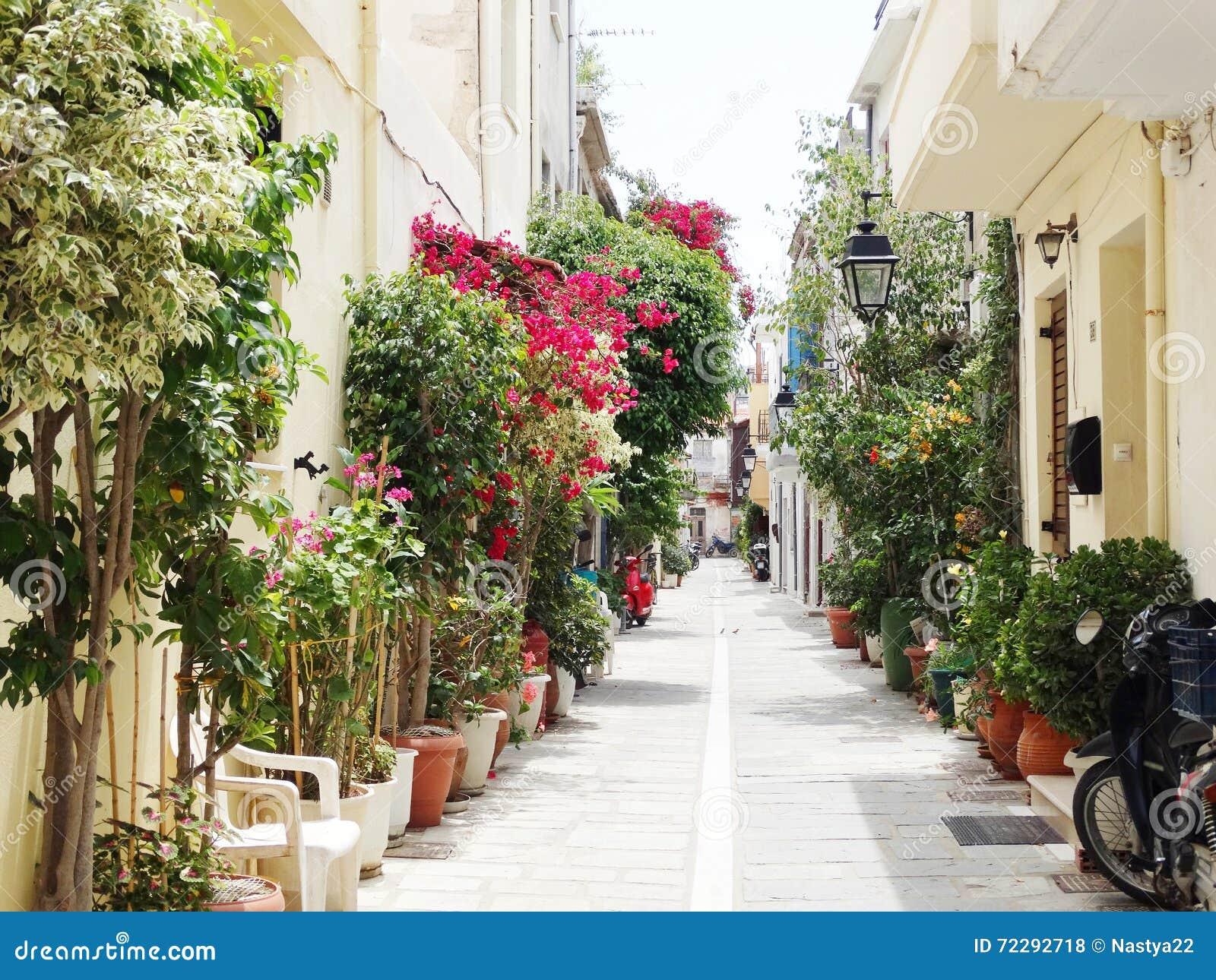 Download Традиционная улица среди Bougainvillaea в городе Греции Rethymno Стоковое Фото - изображение насчитывающей дом, греция: 72292718