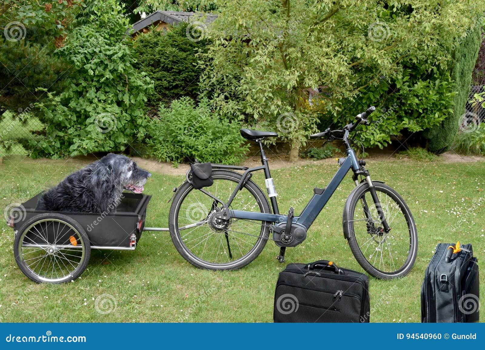 Трейлер велосипеда собаки
