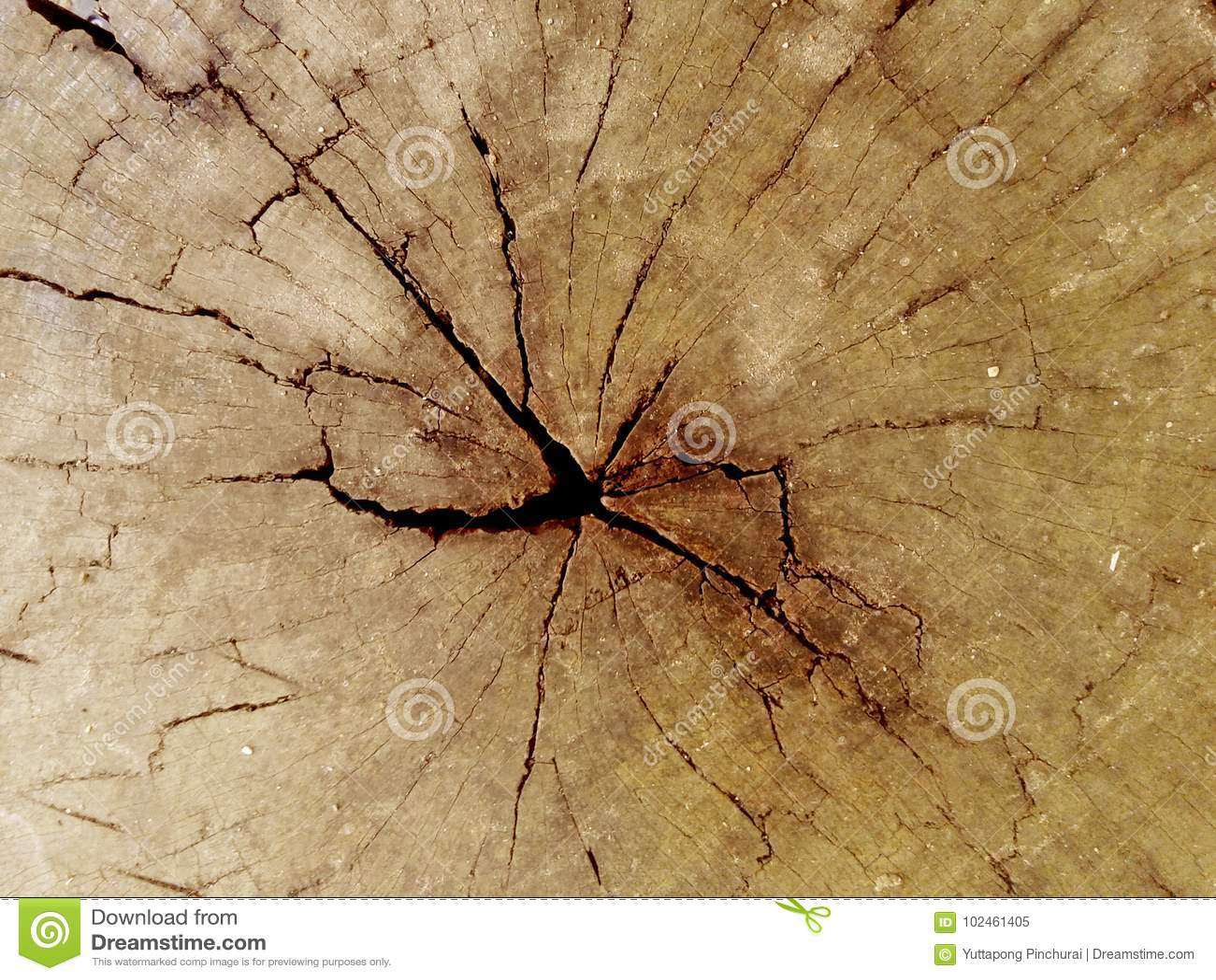 Треснутая выдержанная пнем деревянная предпосылка текстуры brougham