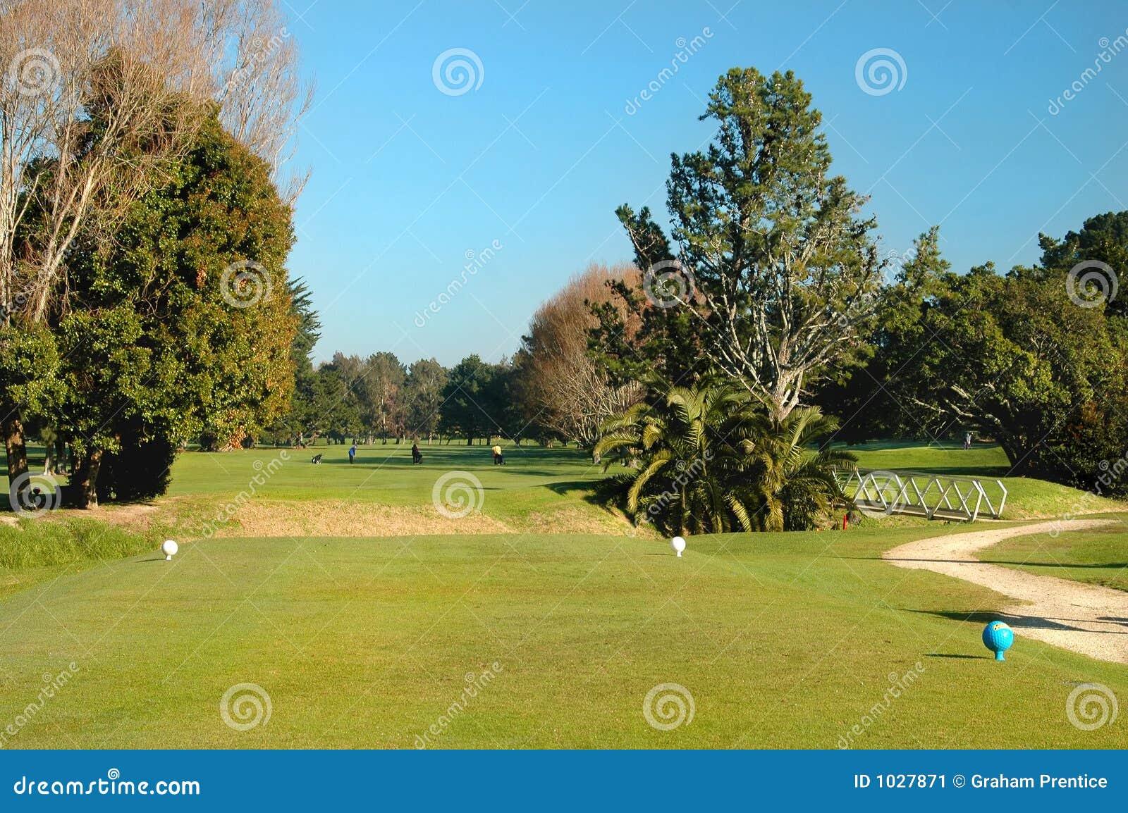 тройник гольфа коробки