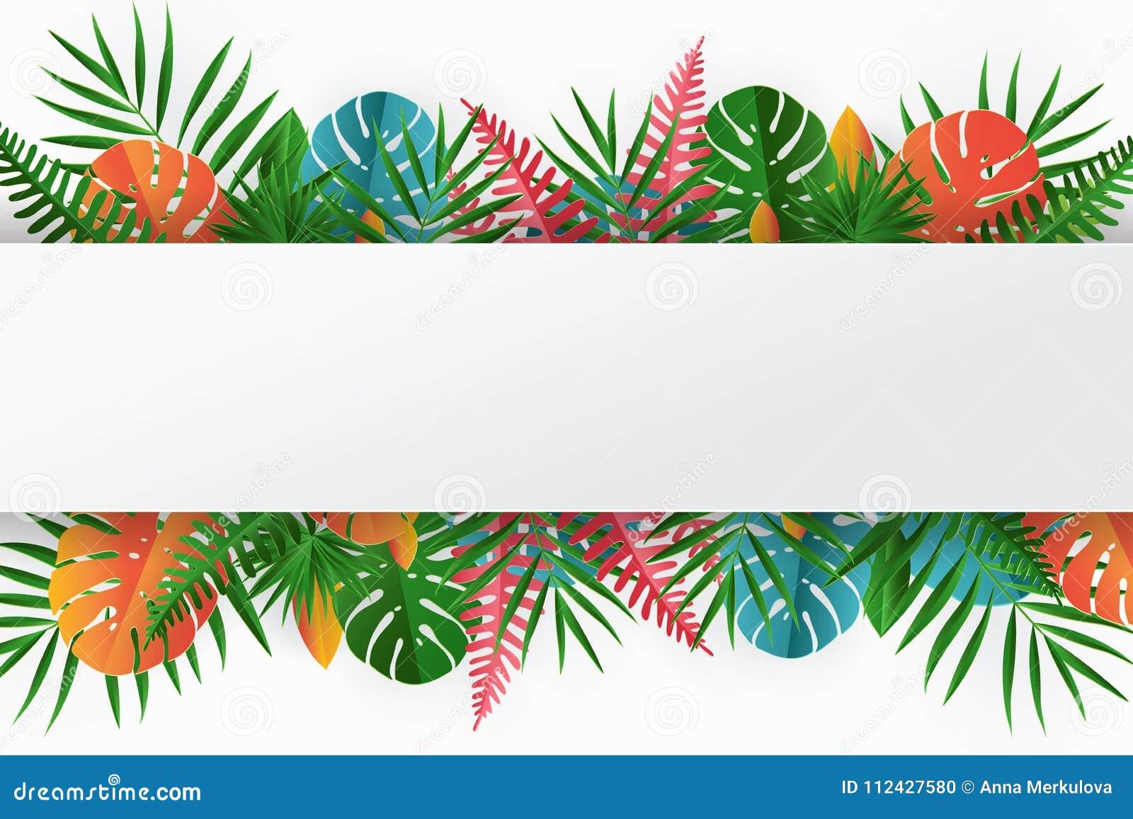 Тропическая бумажная ладонь, monstera выходит рамка Лист лета тропические