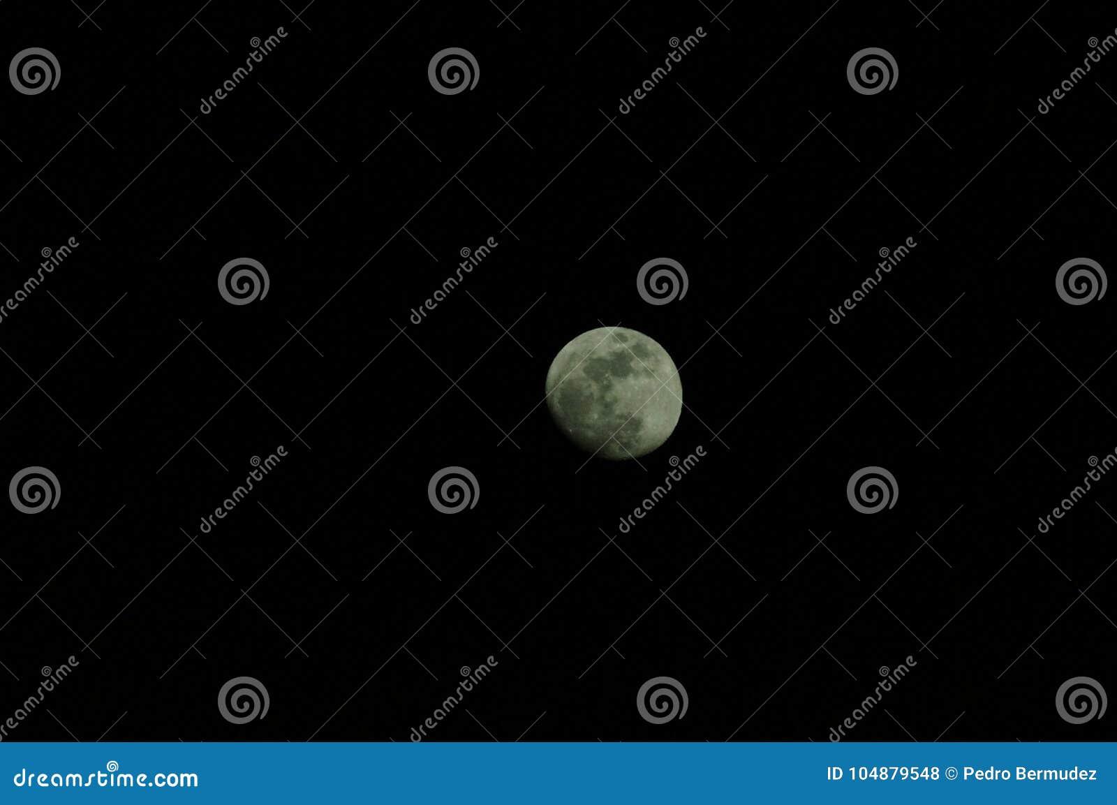 Тропическая влюбленность луны тайна