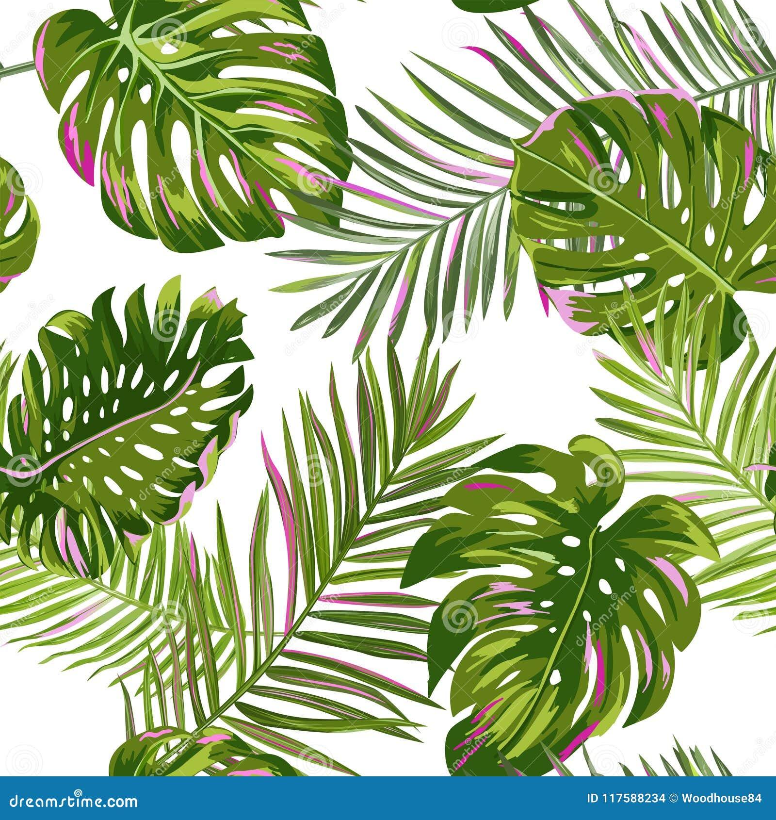 Тропическая ладонь выходит безшовная картина Предпосылка акварели флористическая Экзотический ботанический дизайн для ткани, ткан