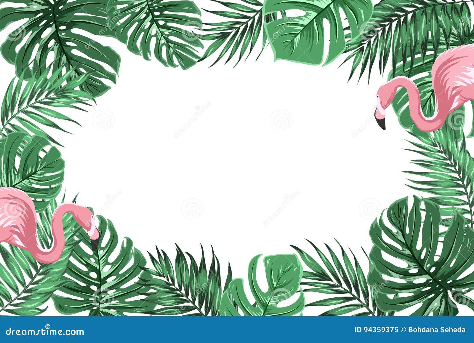 Тропическая рамка границы с джунглями выходит фламинго