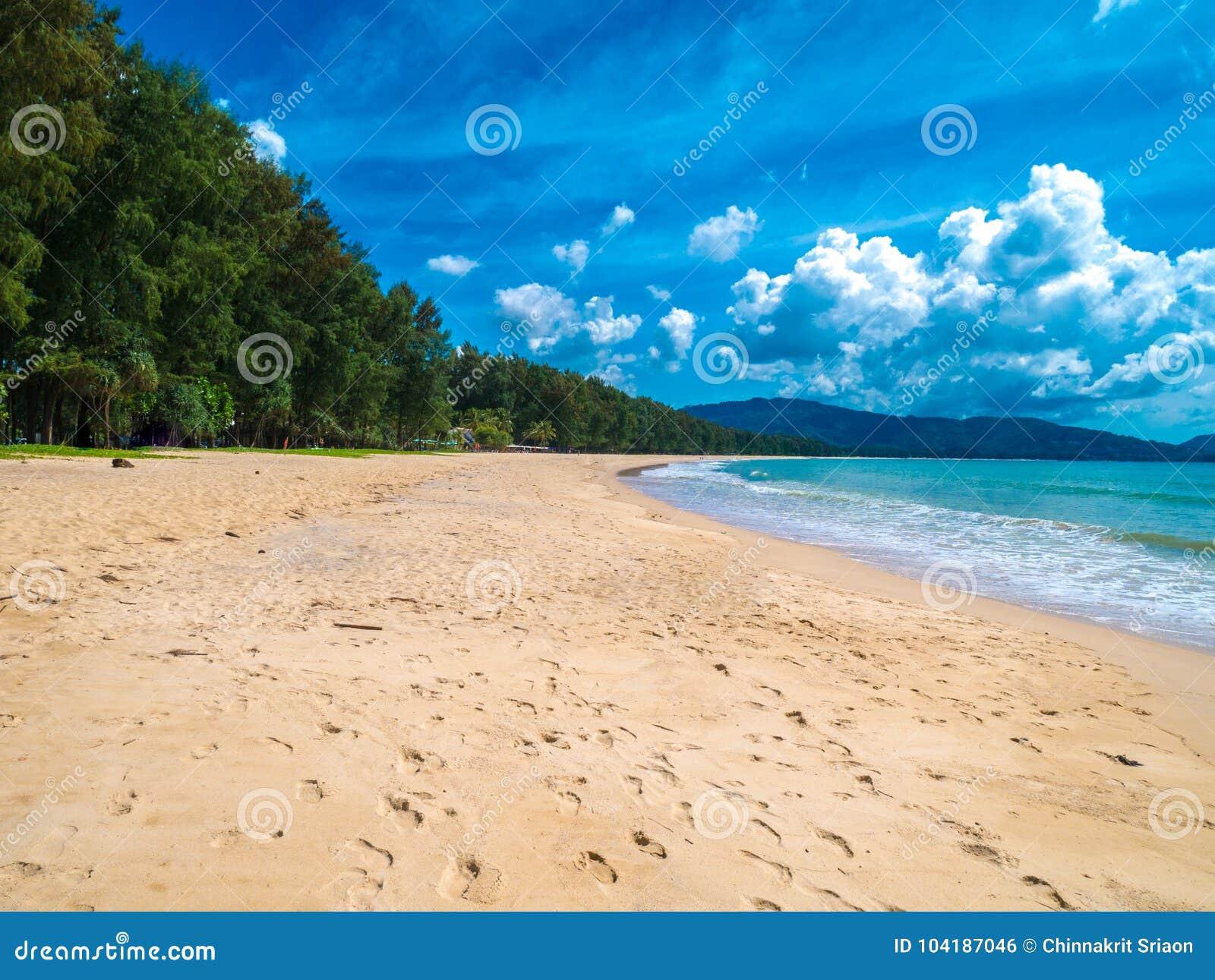 Тропический белый песчаный пляж с чистой водой бирюзы и ладонью t