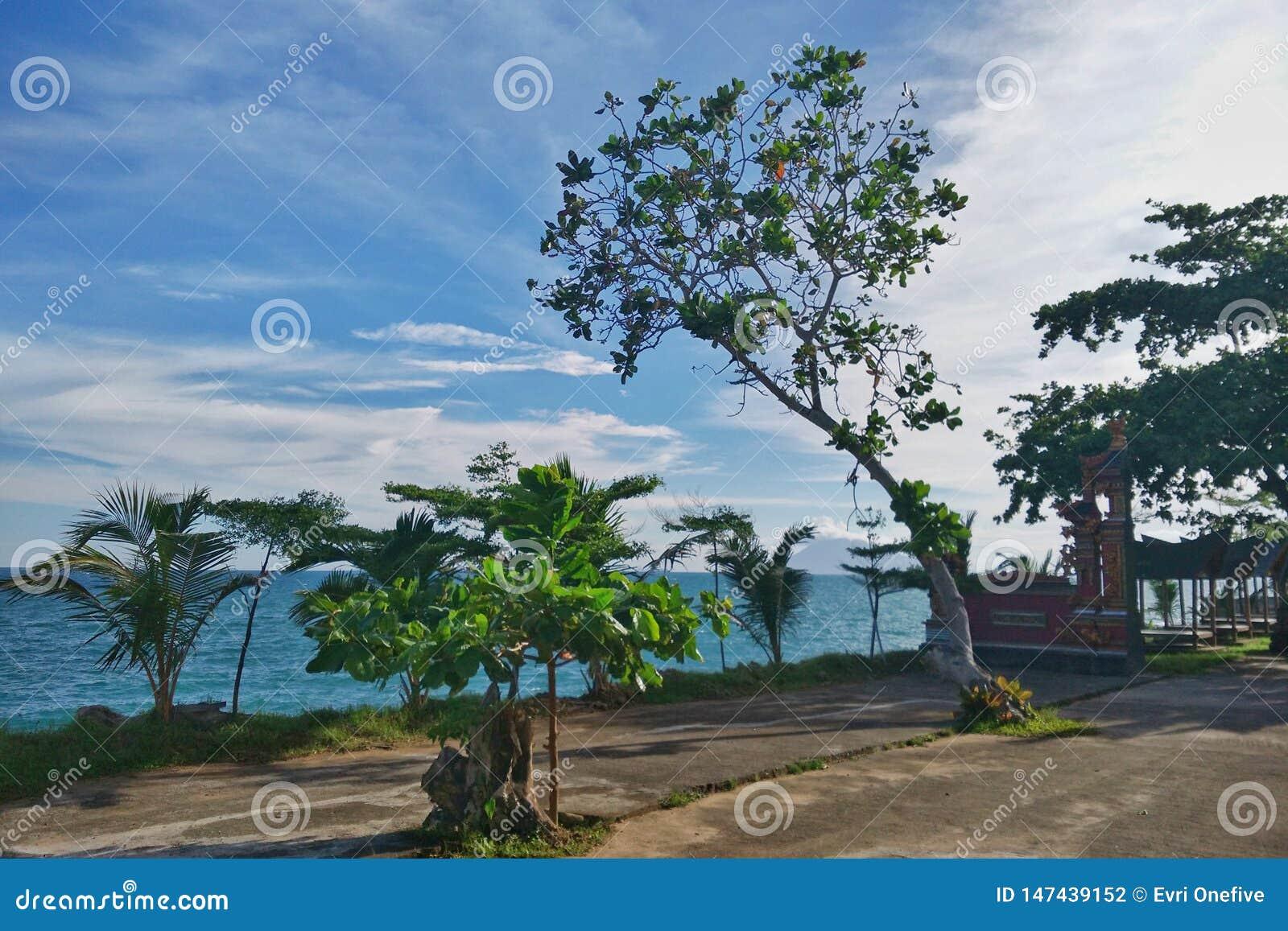Тропический пляж рая в Индонезии
