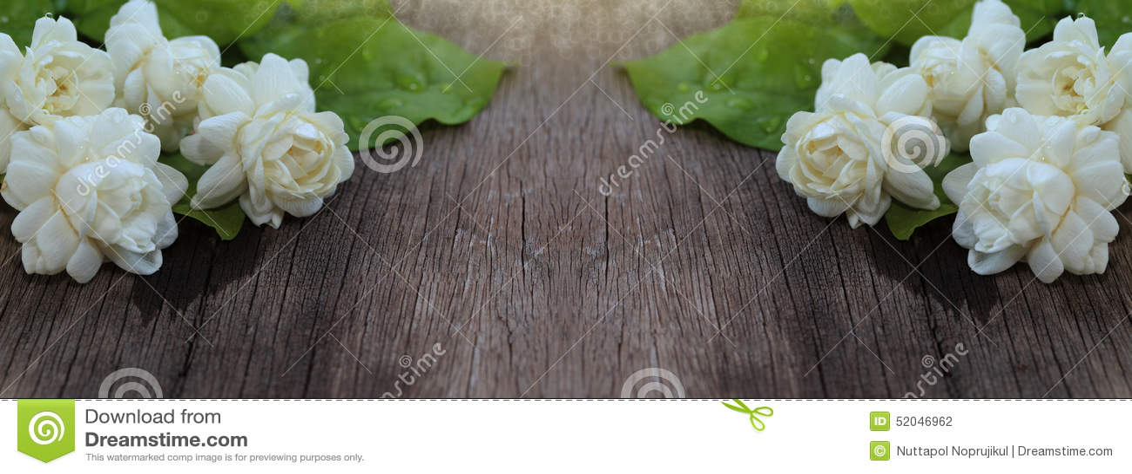 Тропический цветок жасмина на древесине Цветки и листья жасмина на br