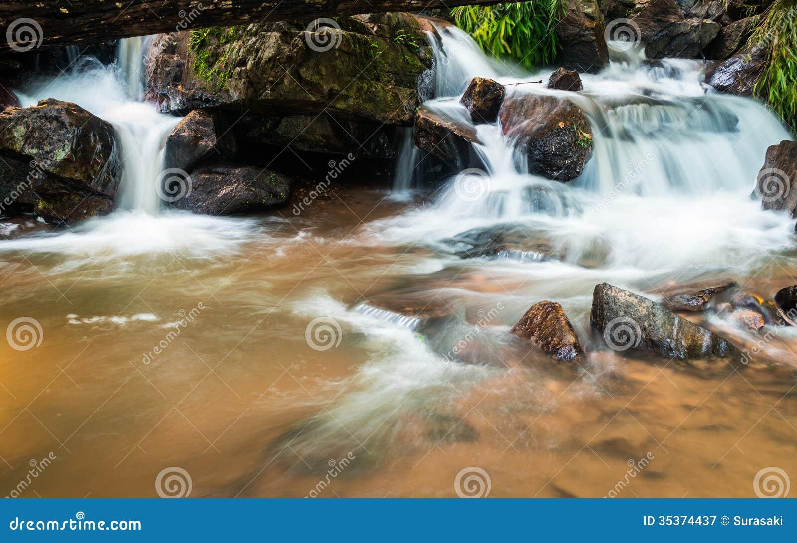 Тропическое падение воды