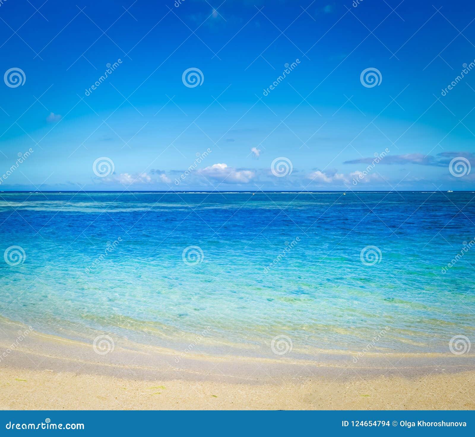 тропическое пляжа песочное Красивейший ландшафт