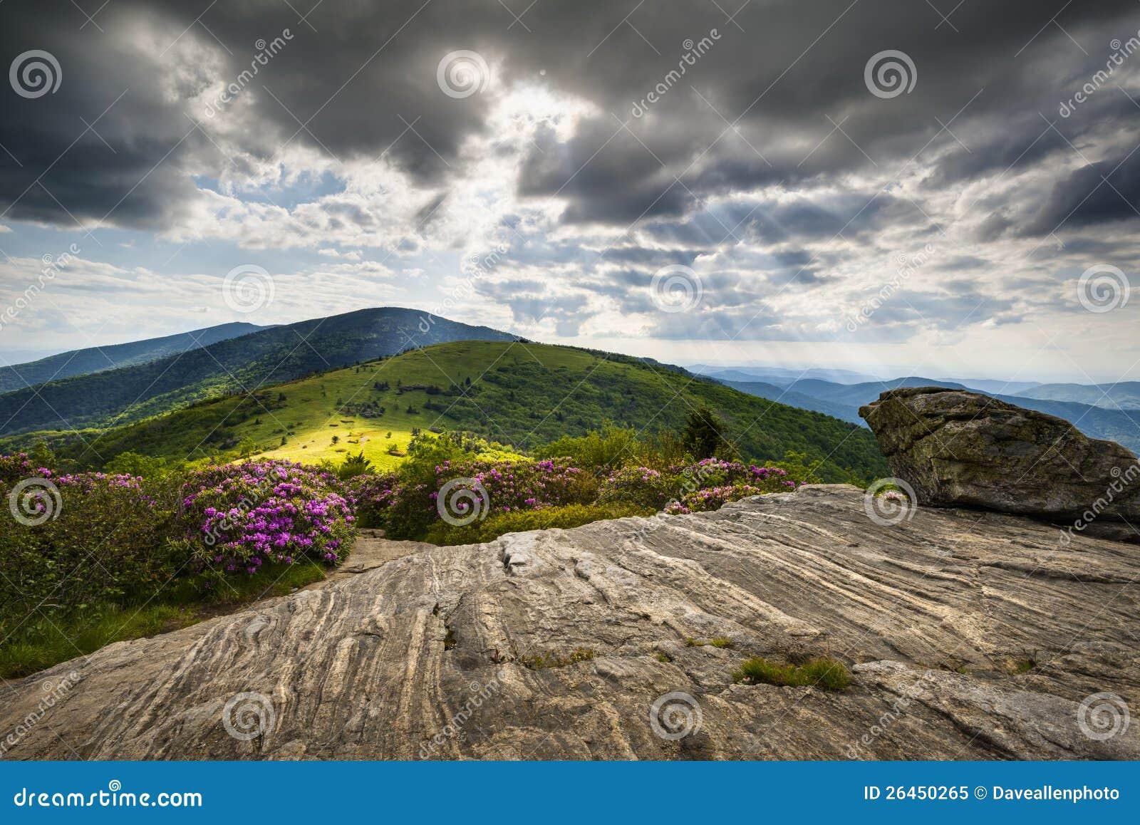 Тропка голубой Ridge NC TN Roan горы аппалачская