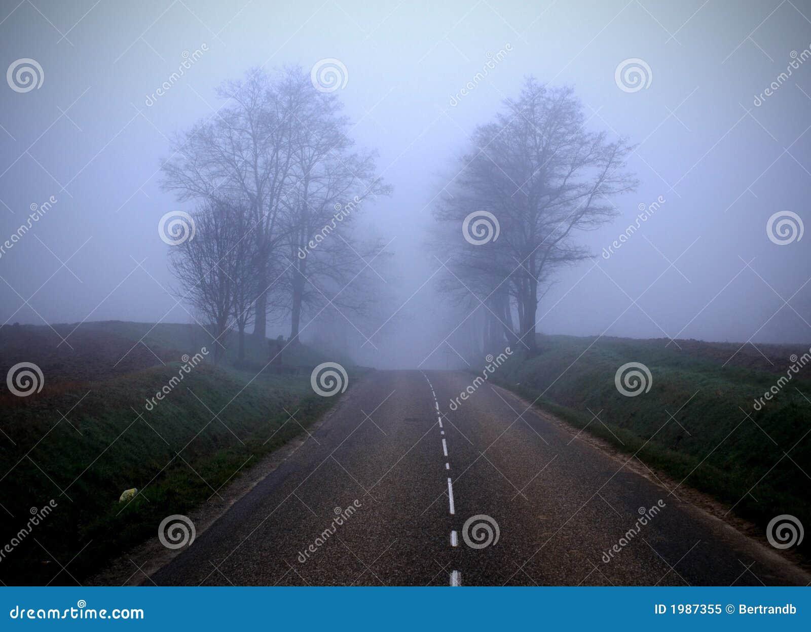 туманная дорога 2