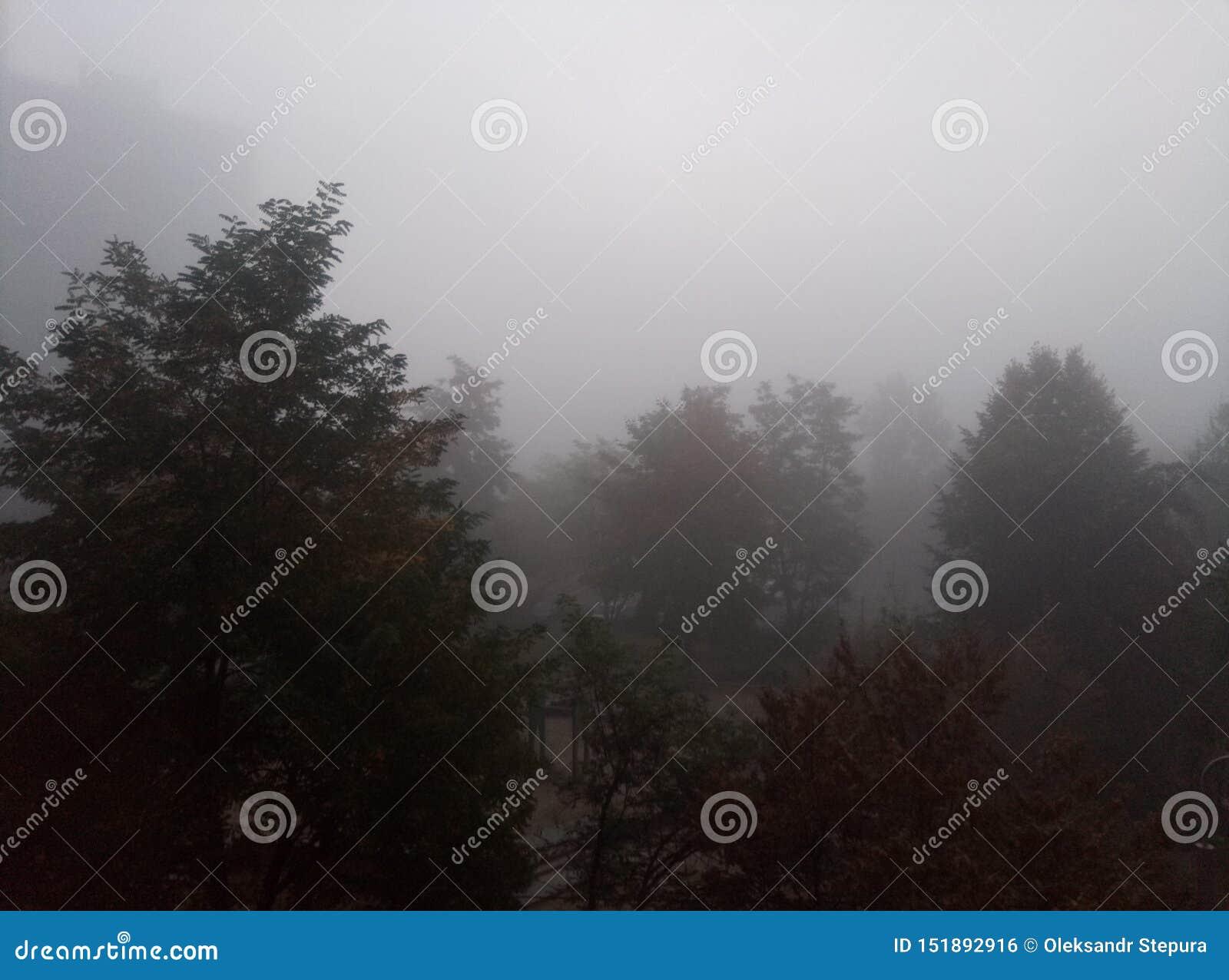 Туманное небо перед дождем