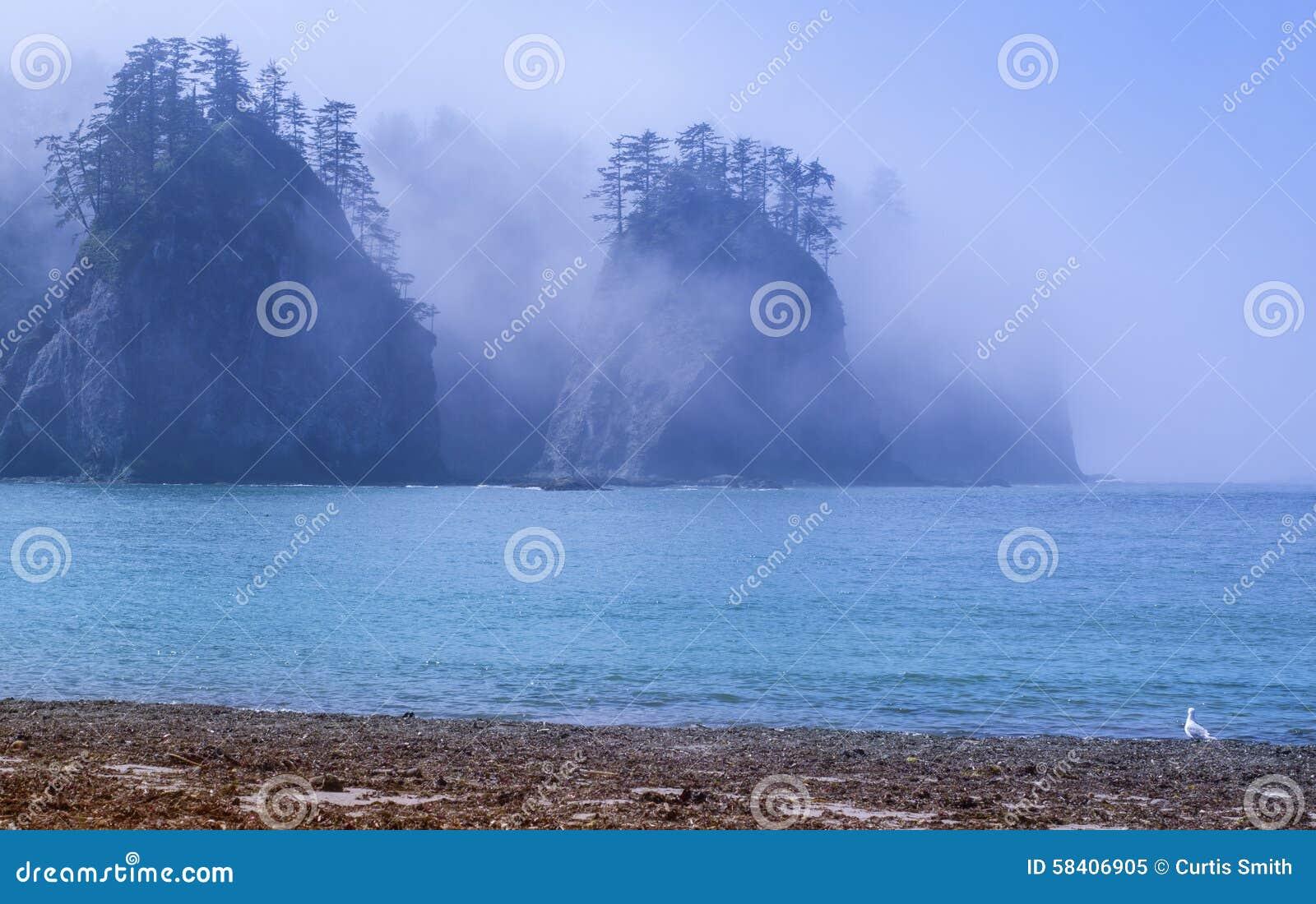 Туман окружает seastacks утеса с деревьями на Тихоокеанском побережье штата Вашингтона